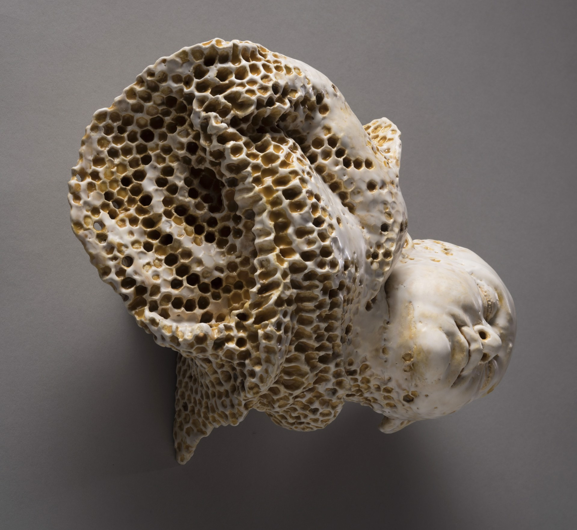 """""""Genesis II"""" (honey comb texture baby) by Adrian Arleo"""
