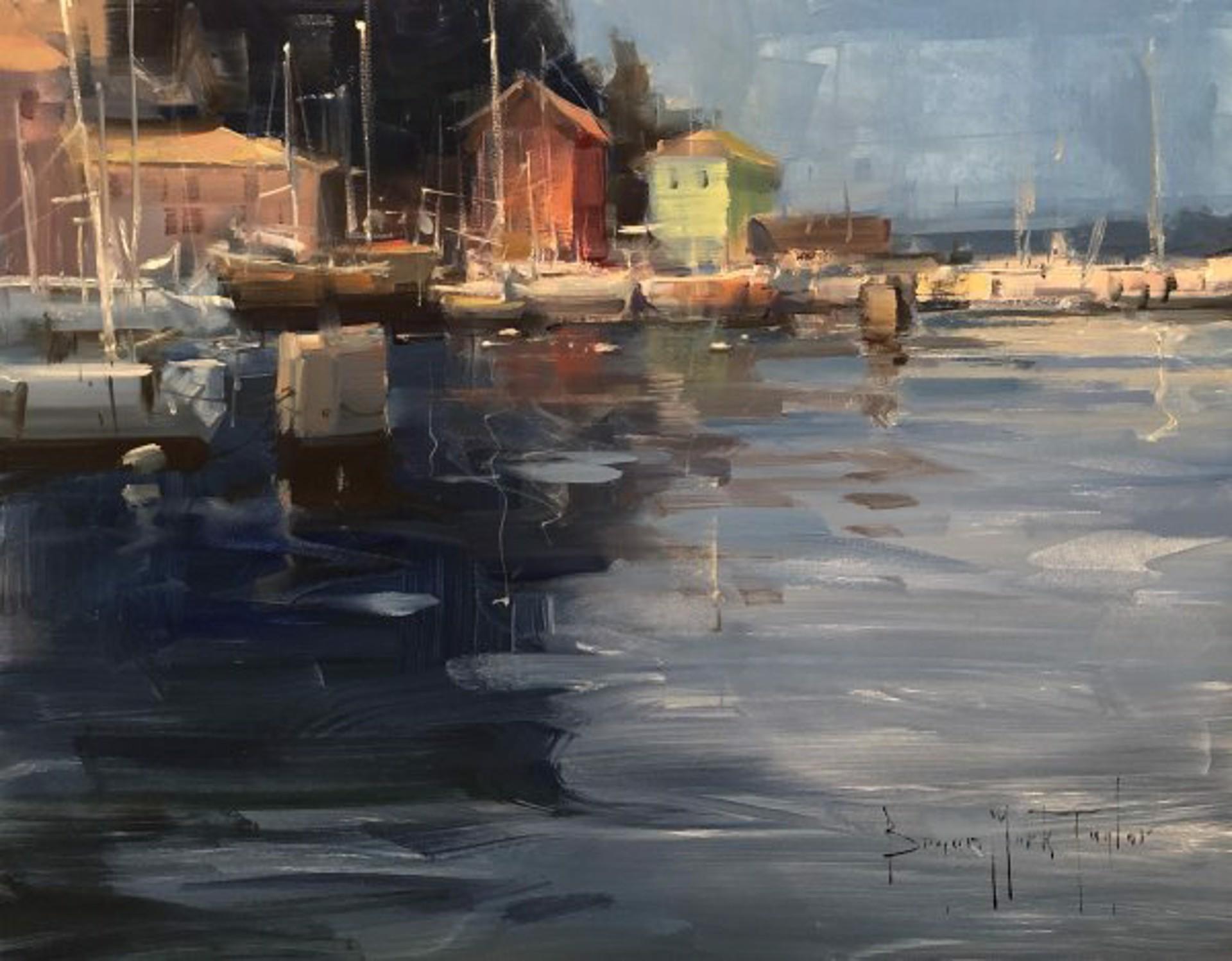 Piran Harbor by Bryan Mark Taylor