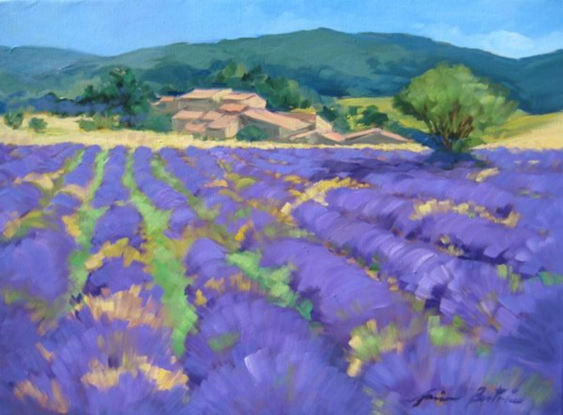Bertran; Banon Plateau by Maria Bertrán
