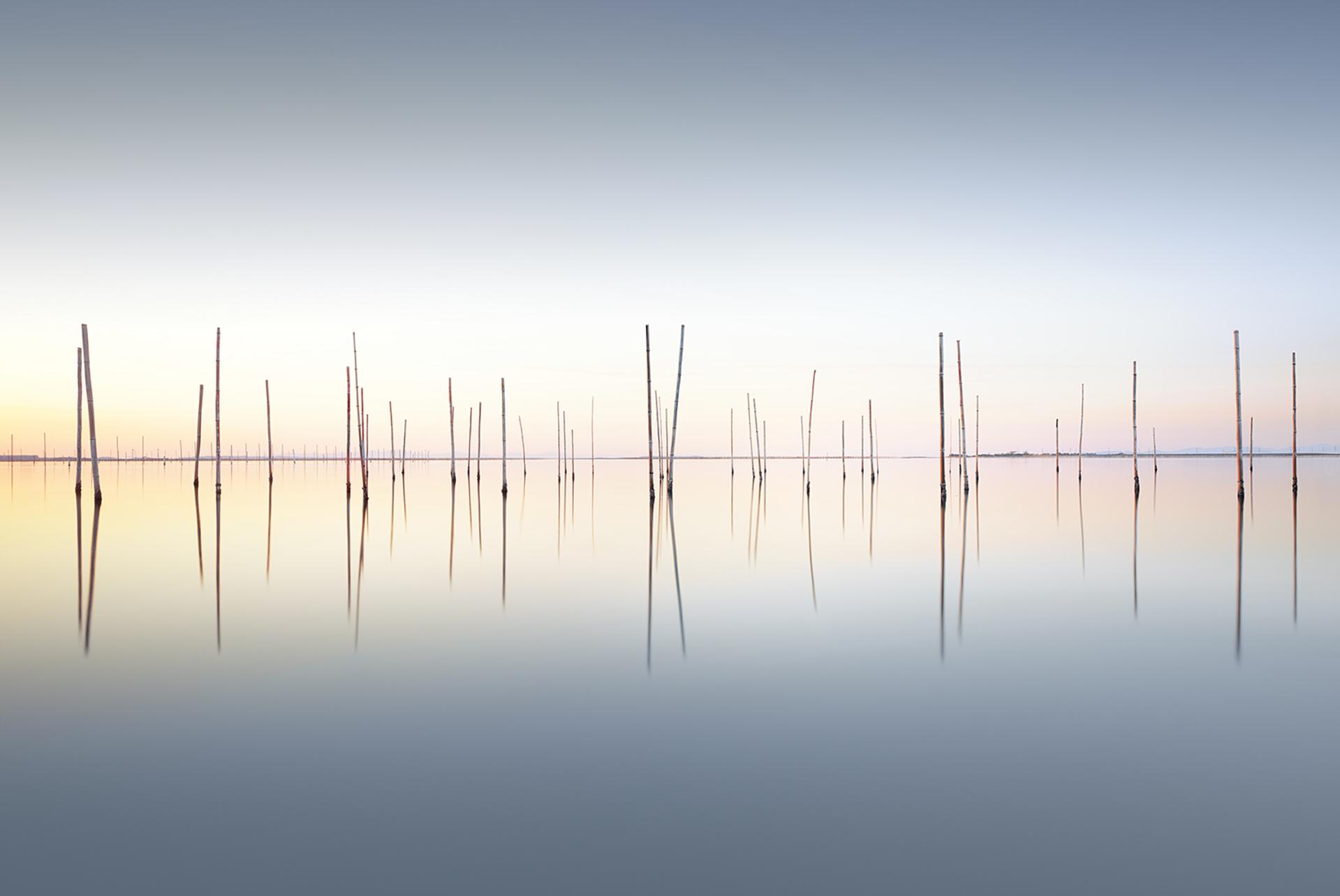Last Light by Michael Levin