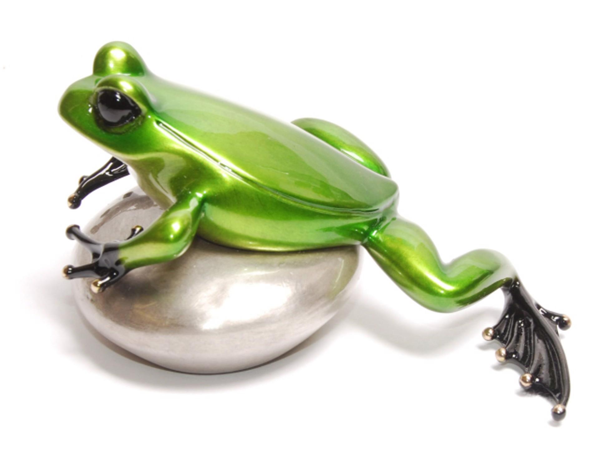 Rockefeller Show Frog - Misty BF174S2 by Tim Cotterill