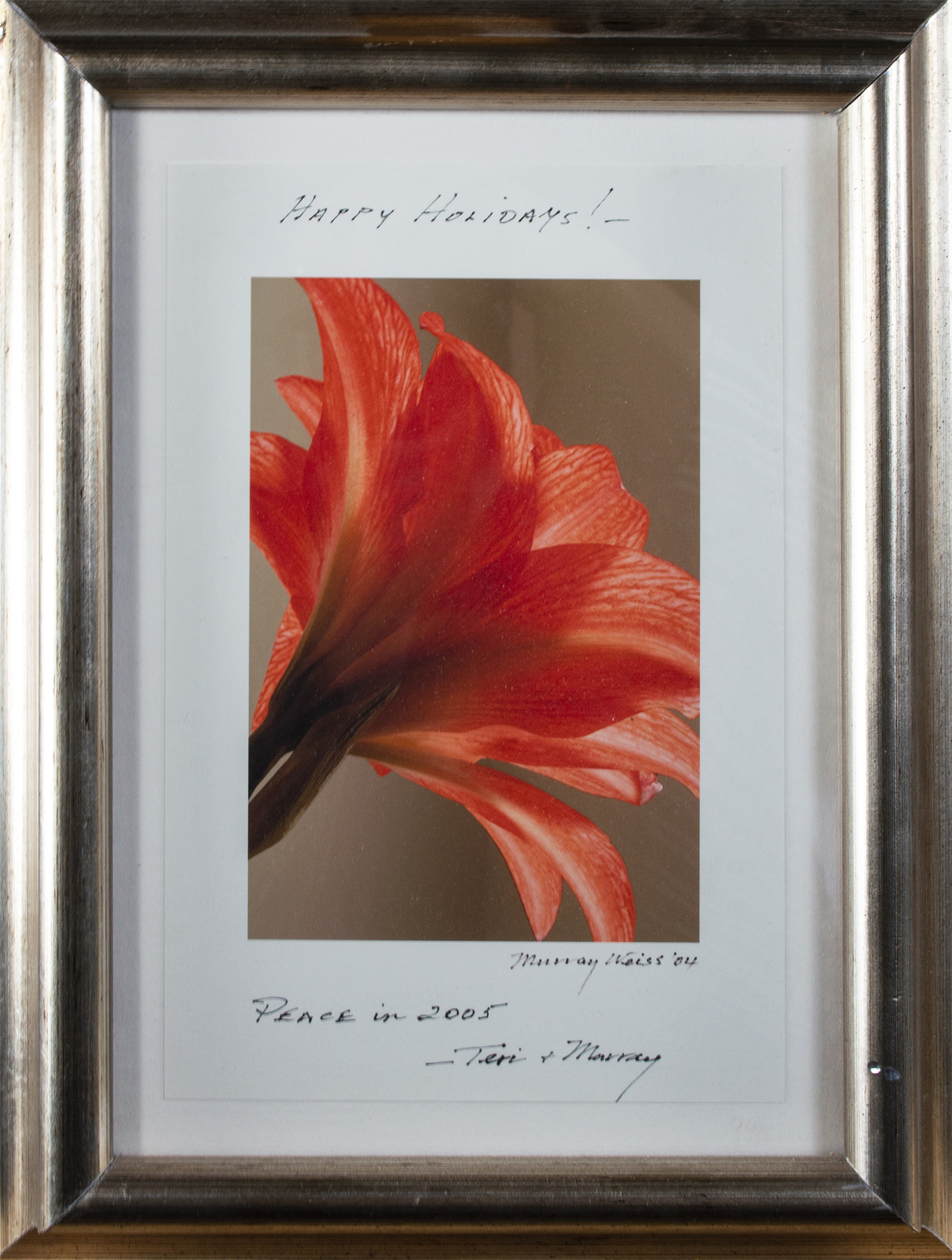 """Red Orange Flower, inscribed """"Happy Holidays! - Peace in 2005 - Teri & Murray"""" by Murray Weiss"""