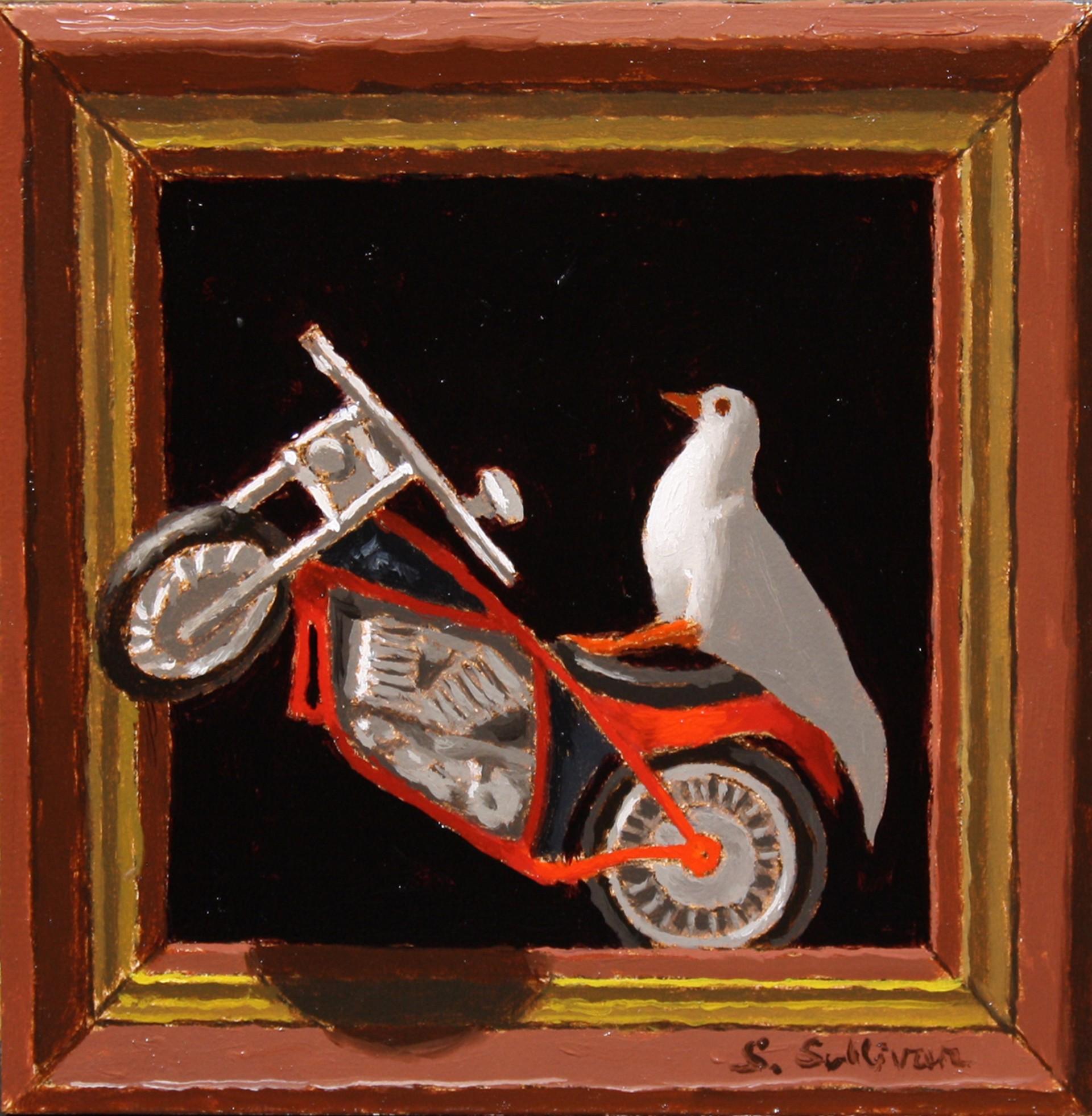 Wheelie by Shawn Sullivan