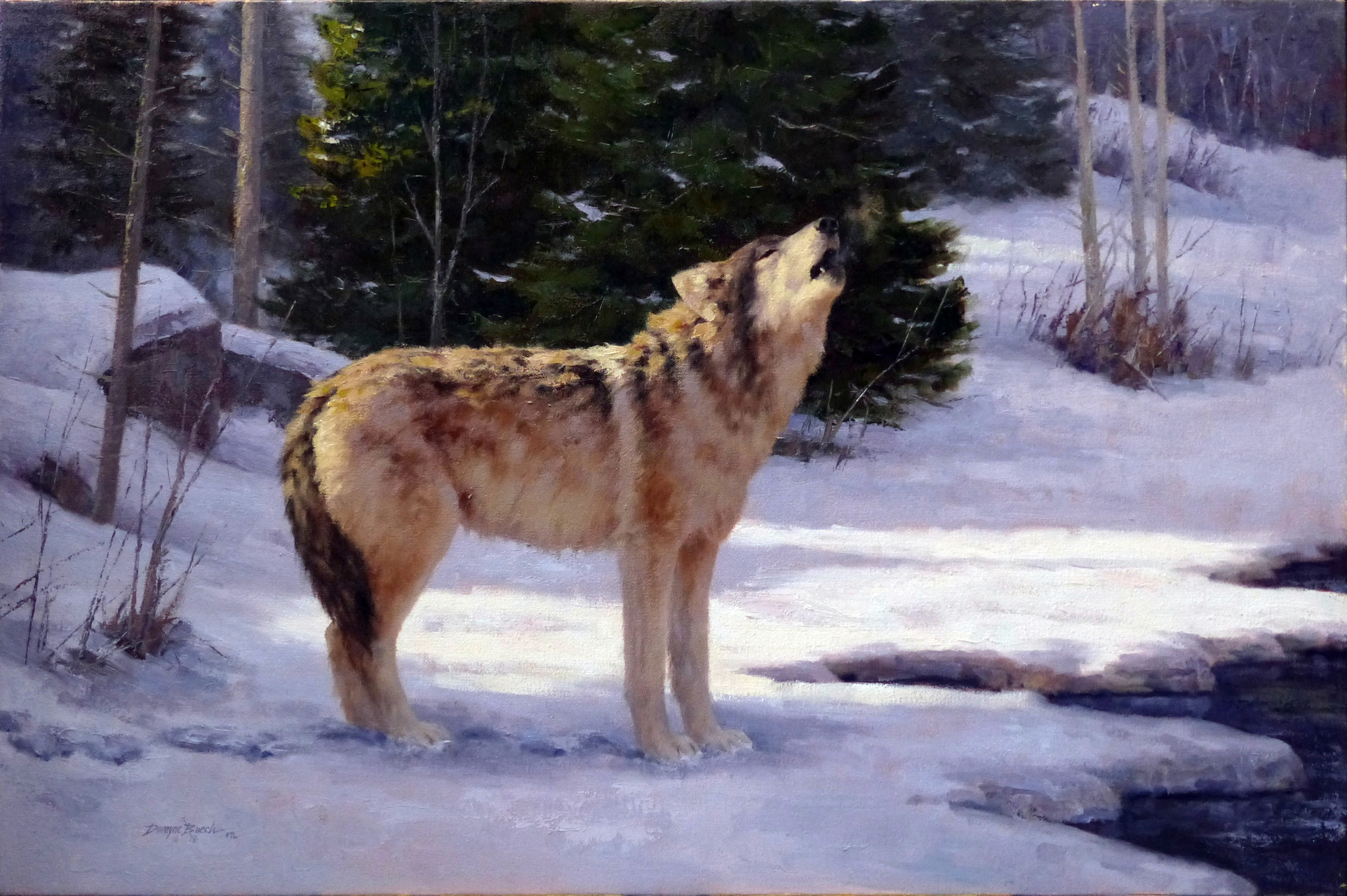 Music of the Woodland (Wolf) by Dwayne Brech