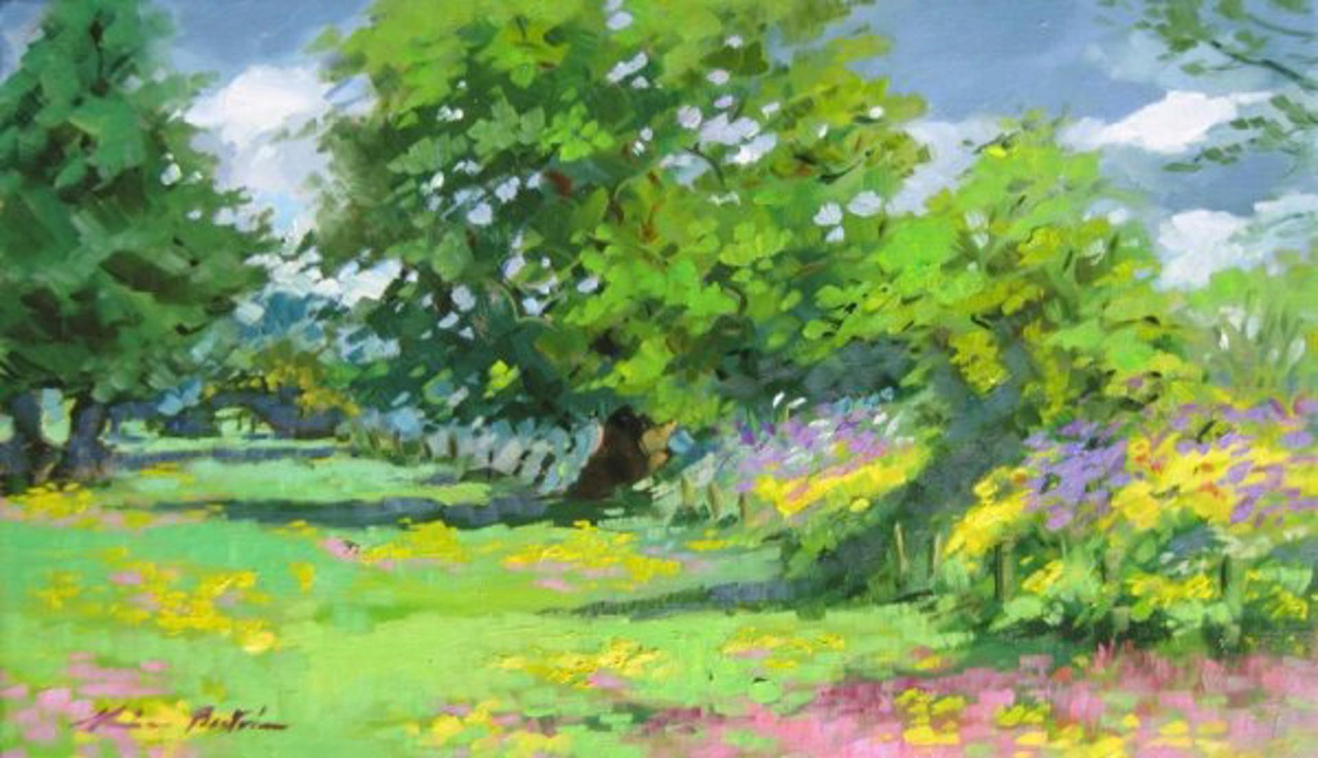 Winchester Meadows by Maria Bertrán