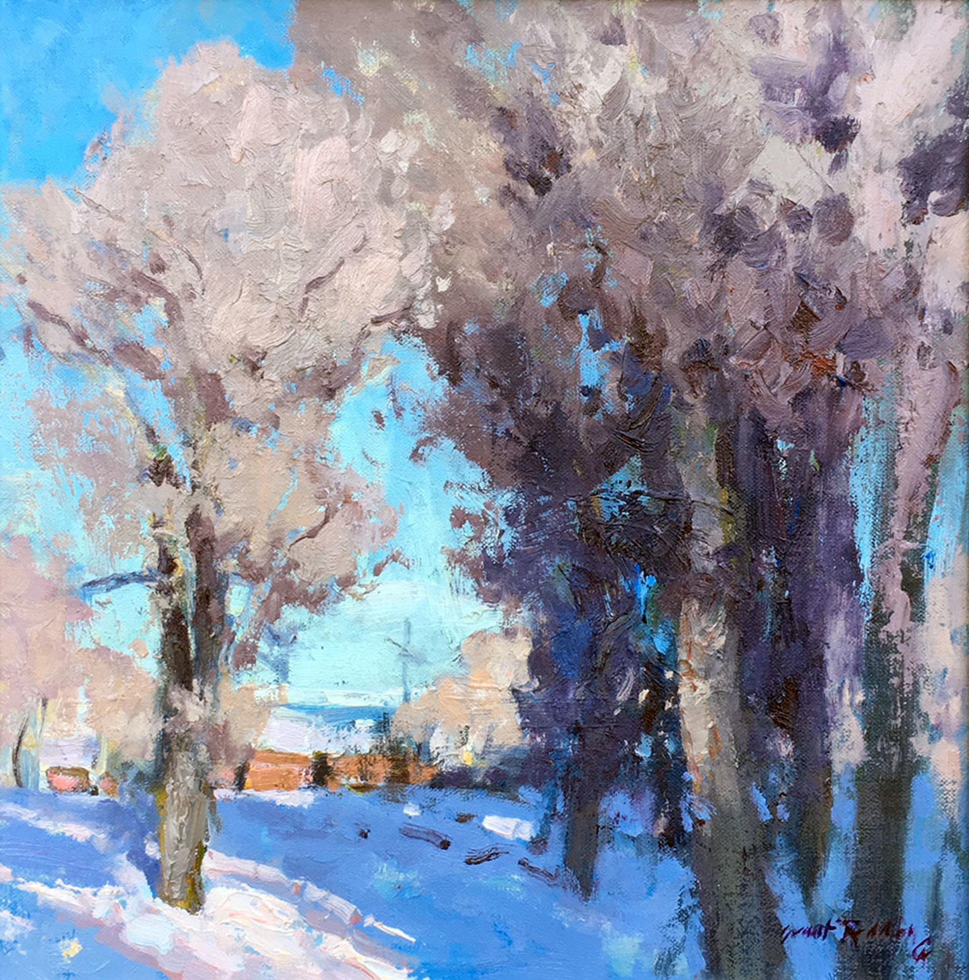 Winter Cottonwoods by Grant Redden