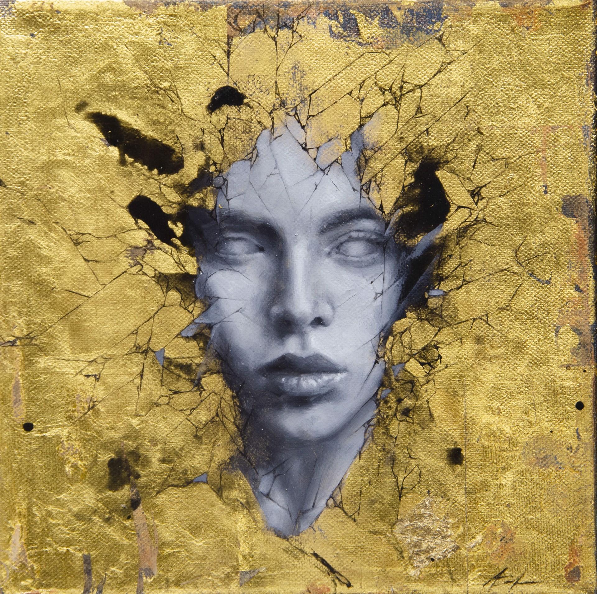 Gilded by Aiden Kringen