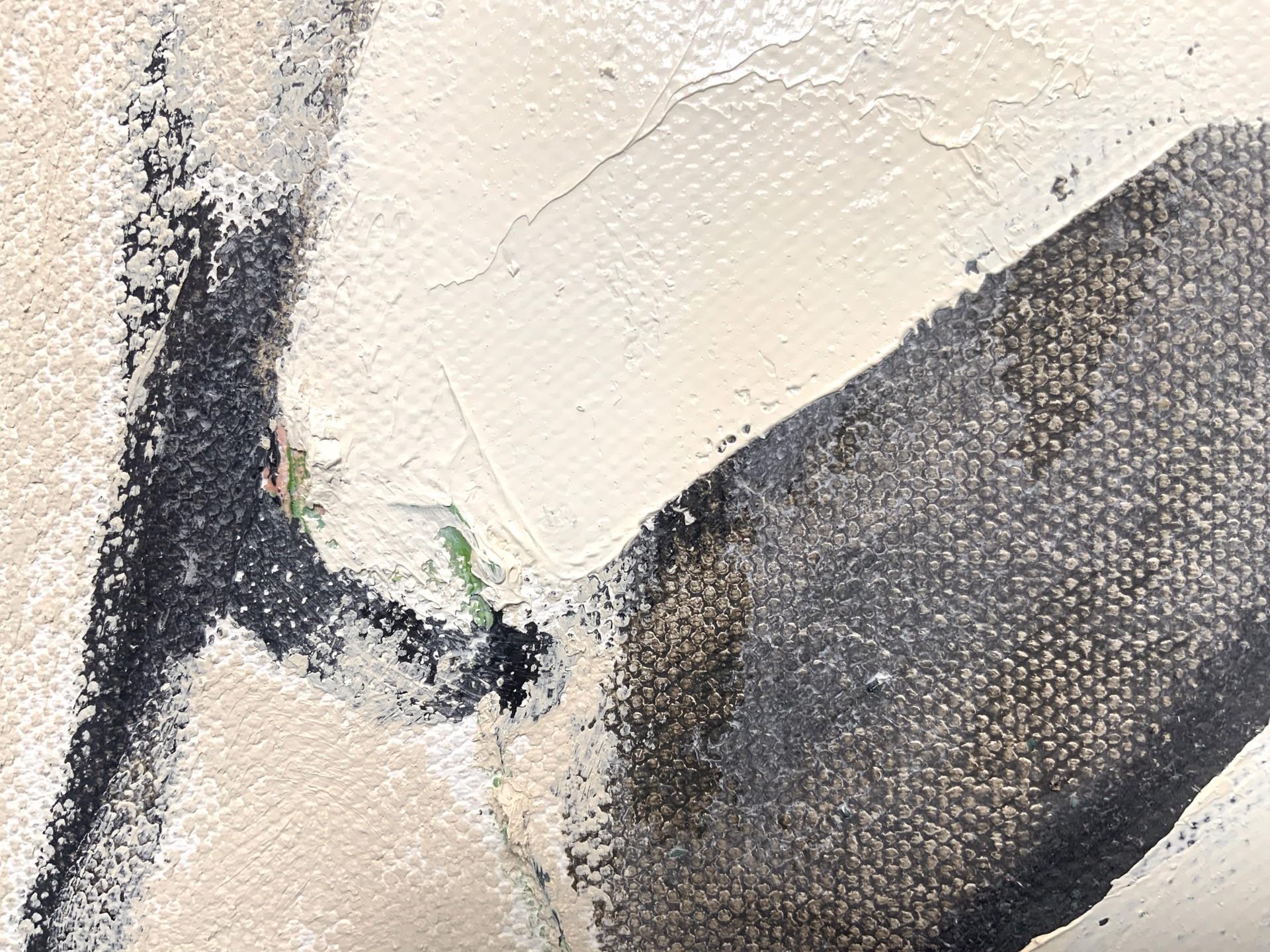 Black Capped Chickadee by stevenpage prewitt