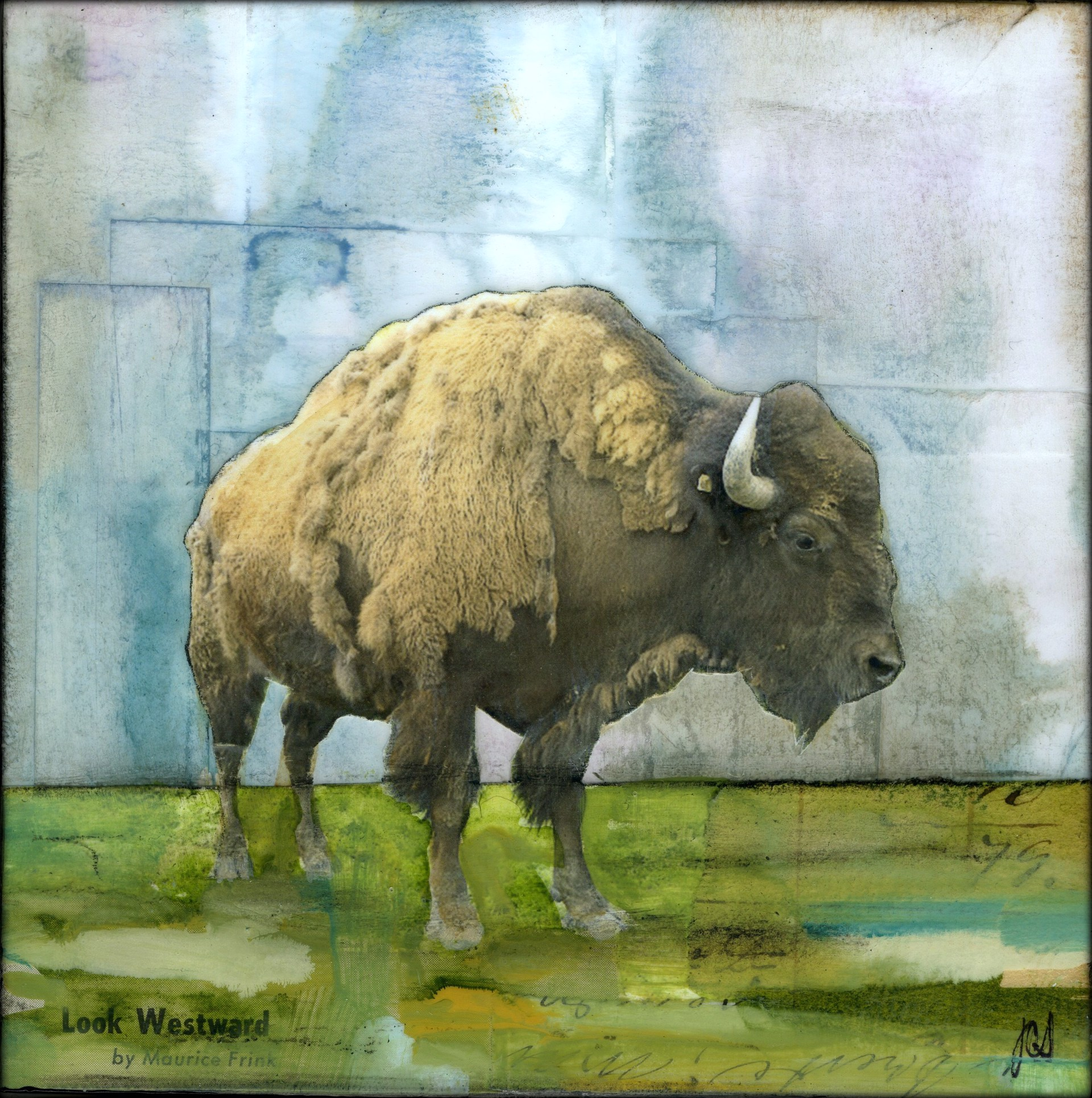 Brute Buffalo by JC Spock