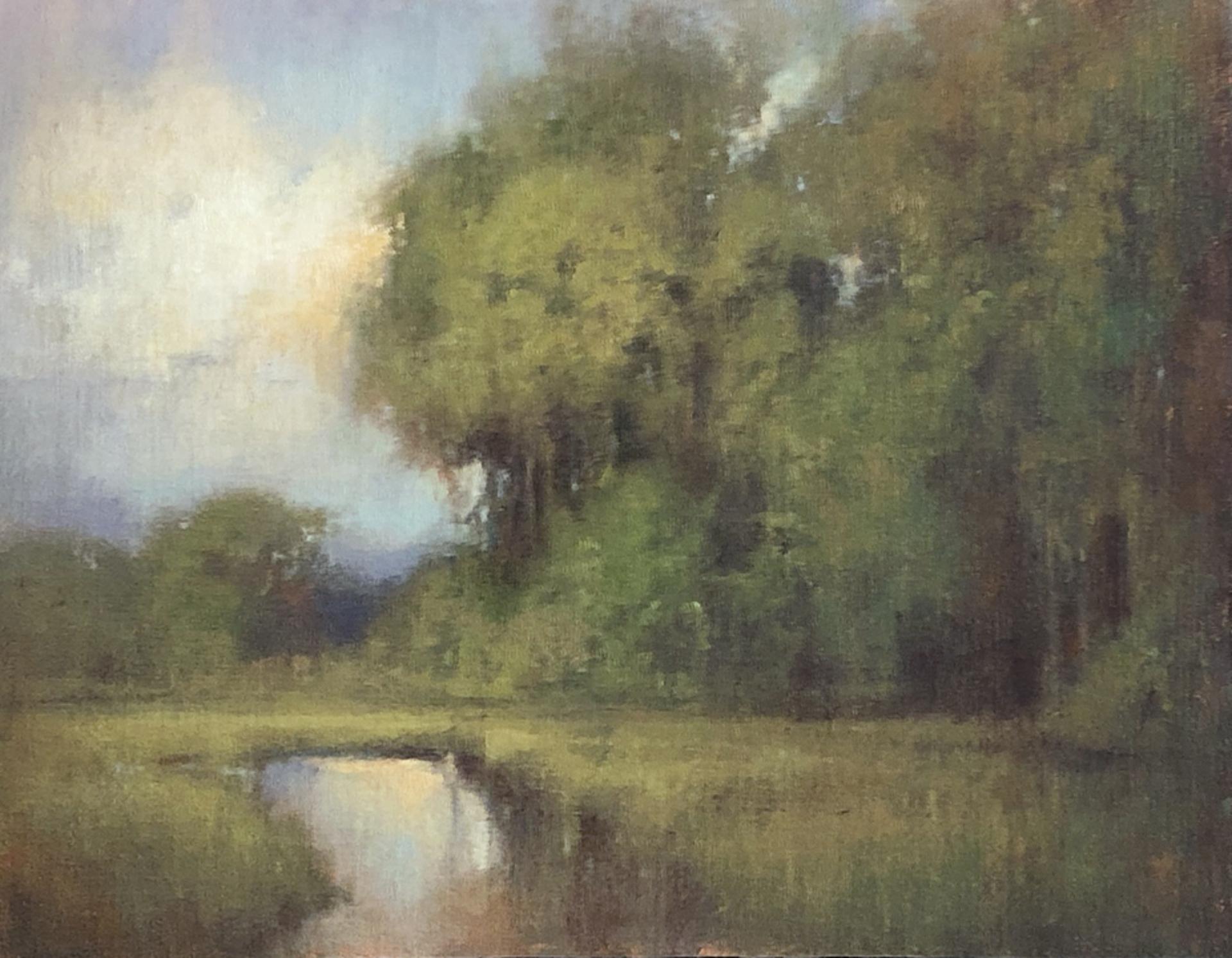 Shifting Seasons by Chris Groves