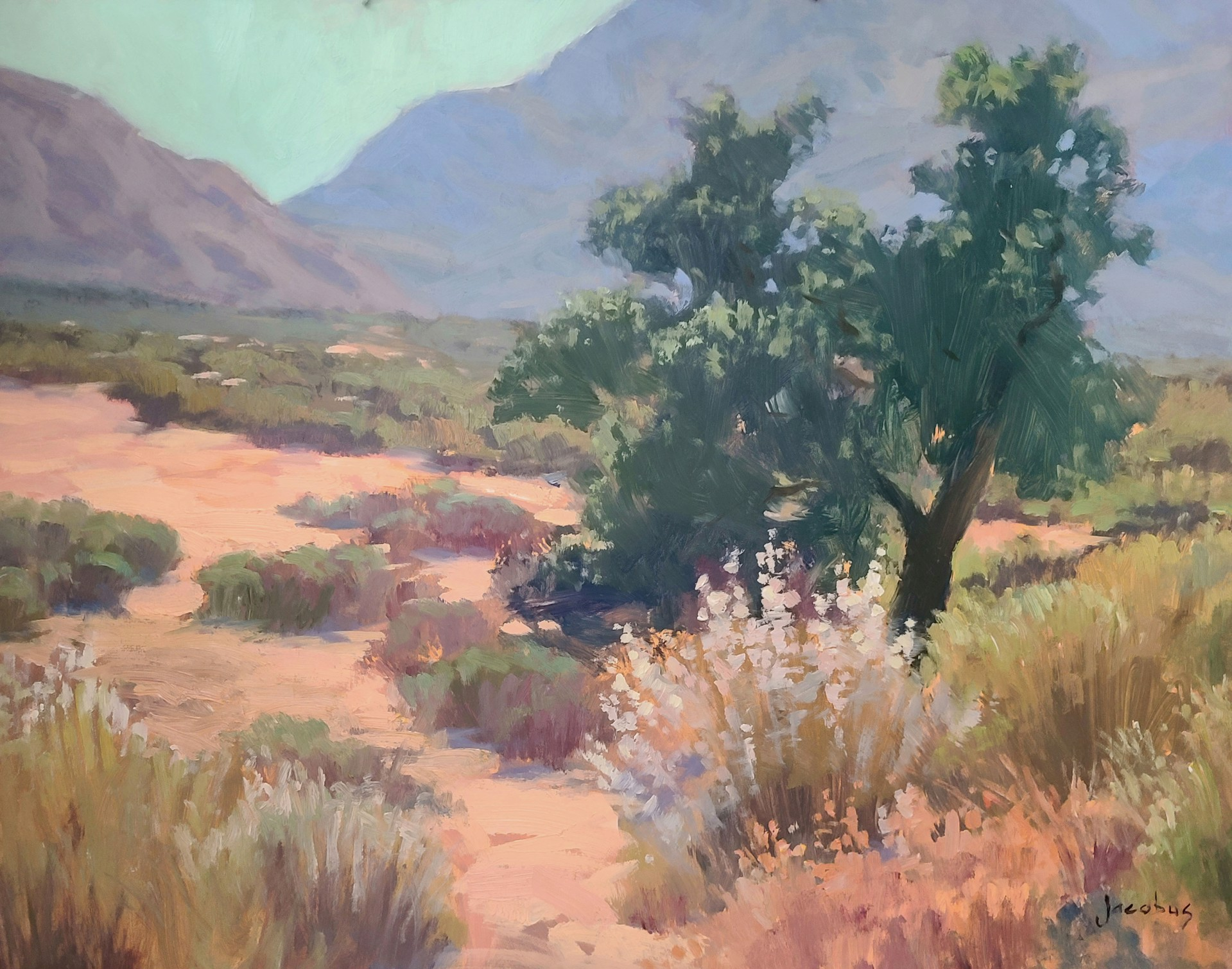 High Desert Colors by Jacobus Baas