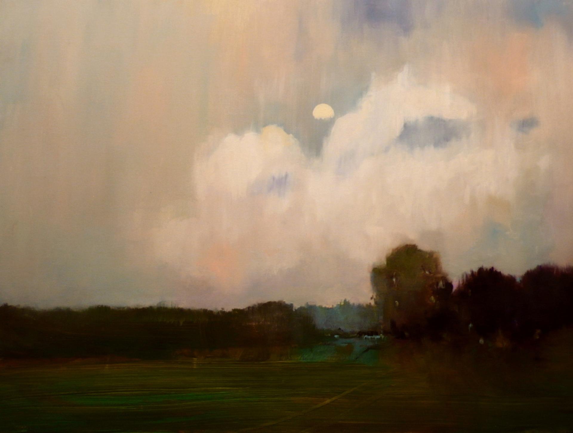 Field Nocturn by Tobin G Karicher