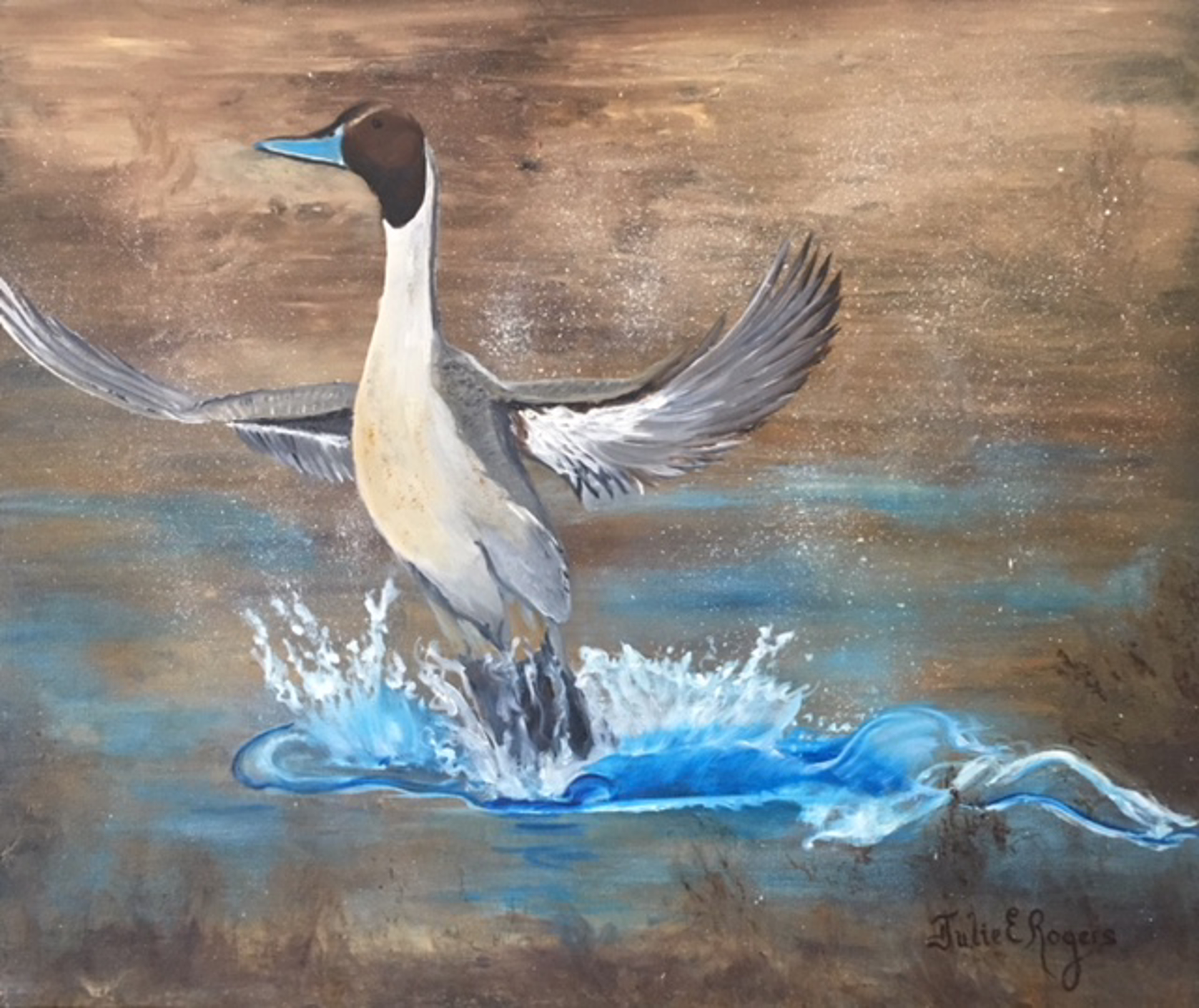 Pintail by Julie Rogers