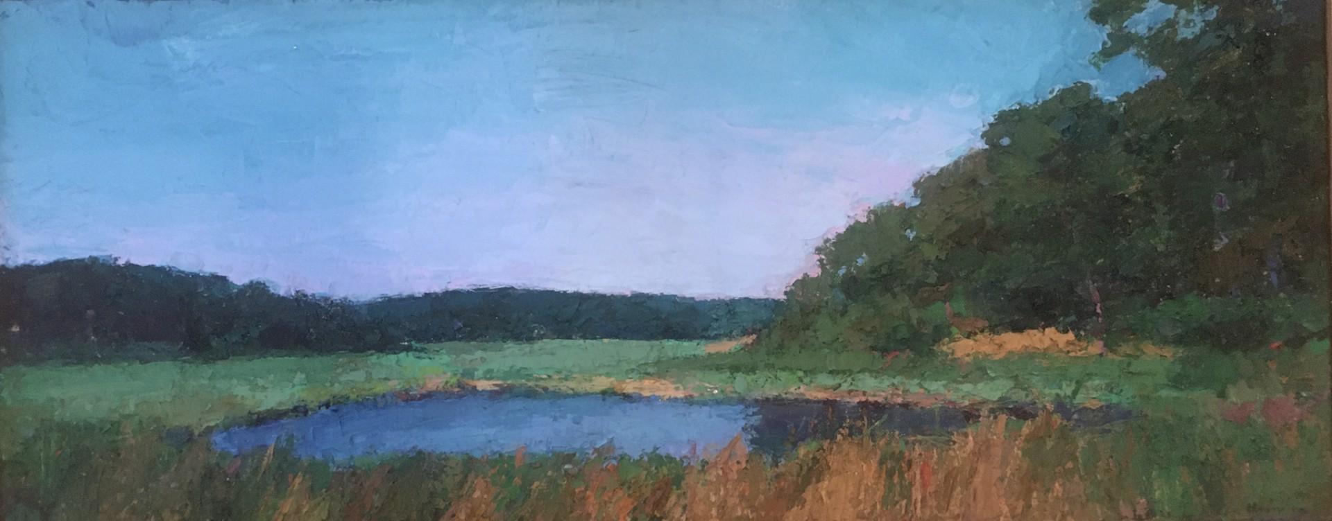 Tidal Marsh by Larry Horowitz