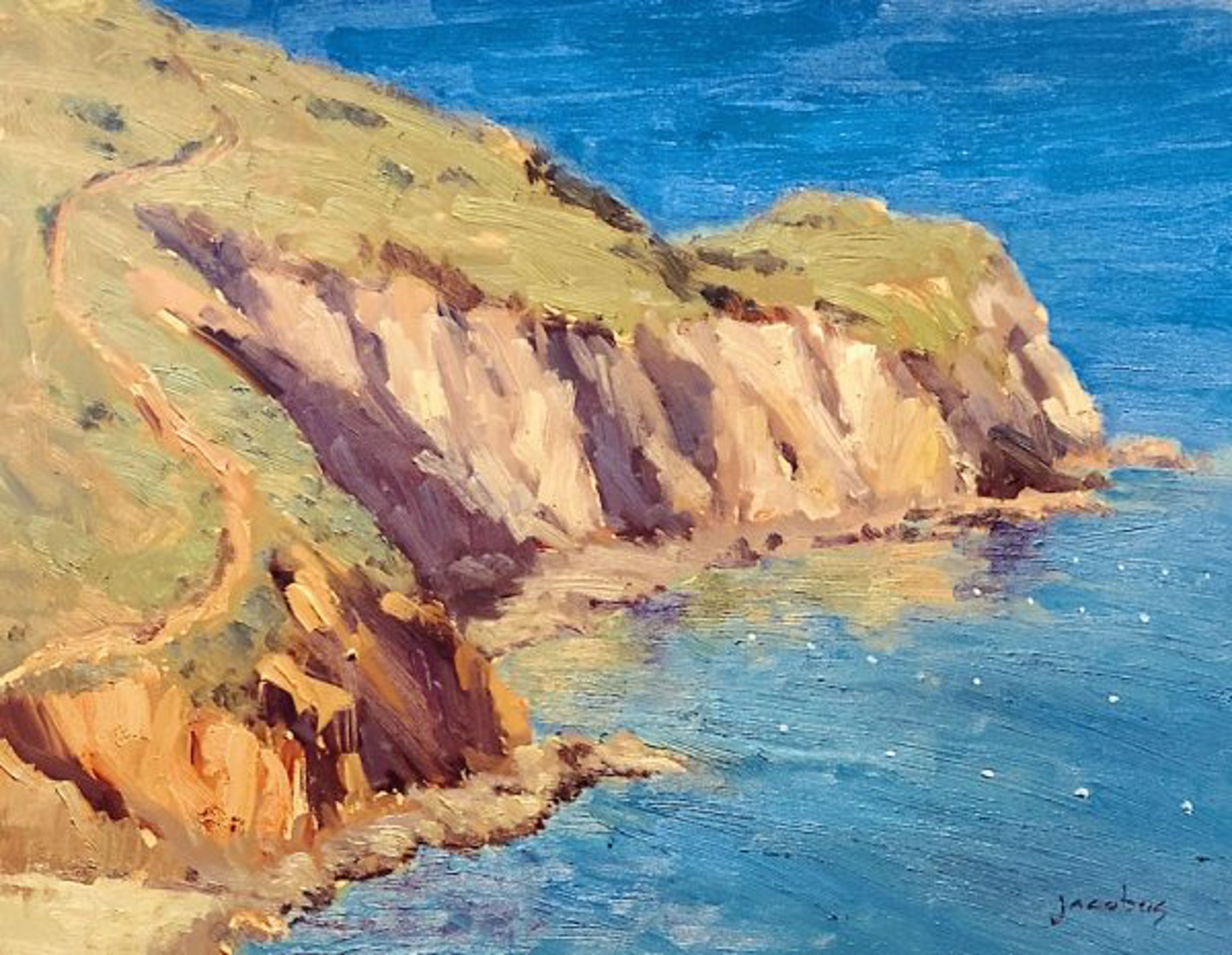 Cherry Cove, Catalina by Jacobus Baas