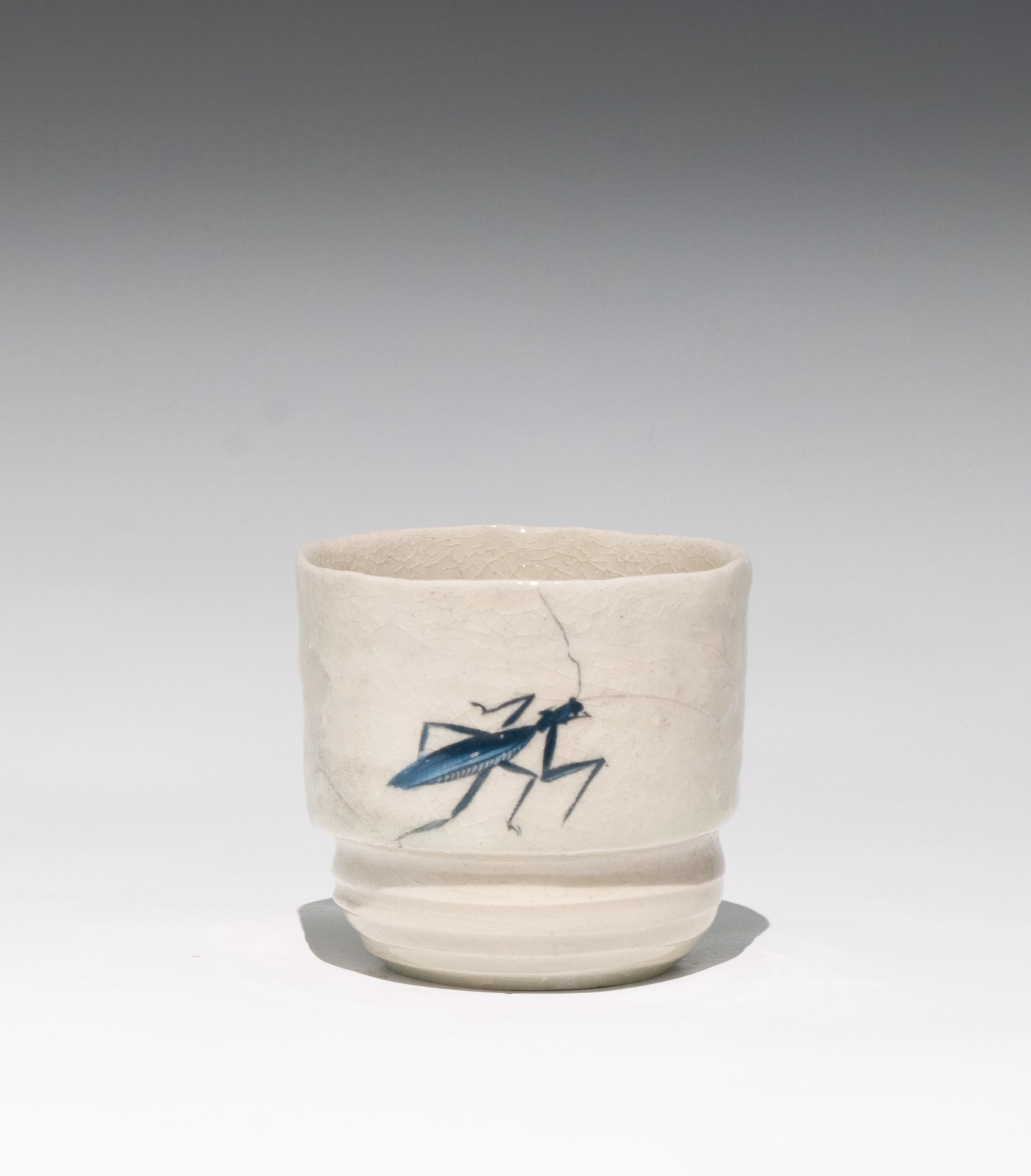 Insect Tea Bowl 16 by Caroline Bottom Anderson