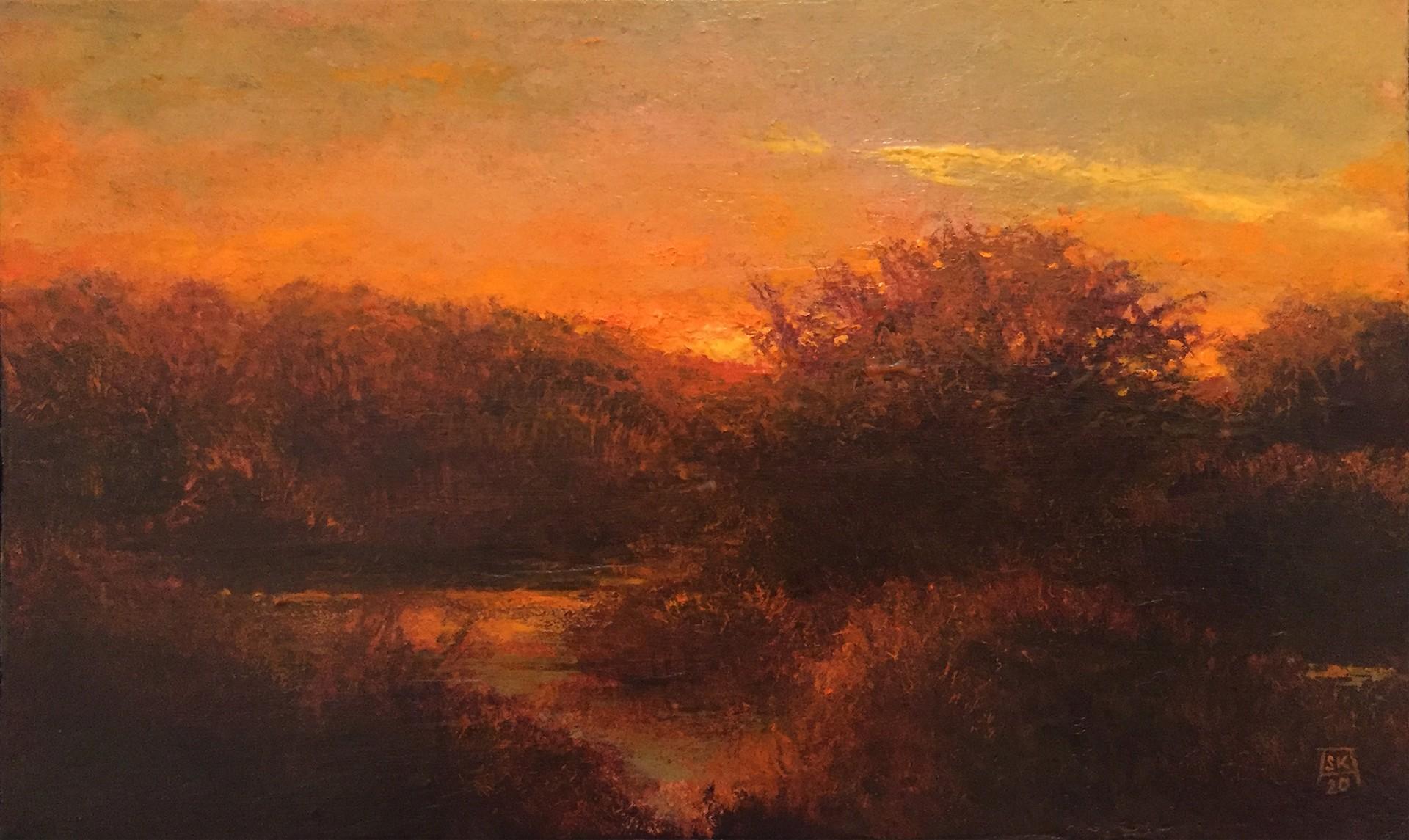 Evening Marsh by Shawn Krueger