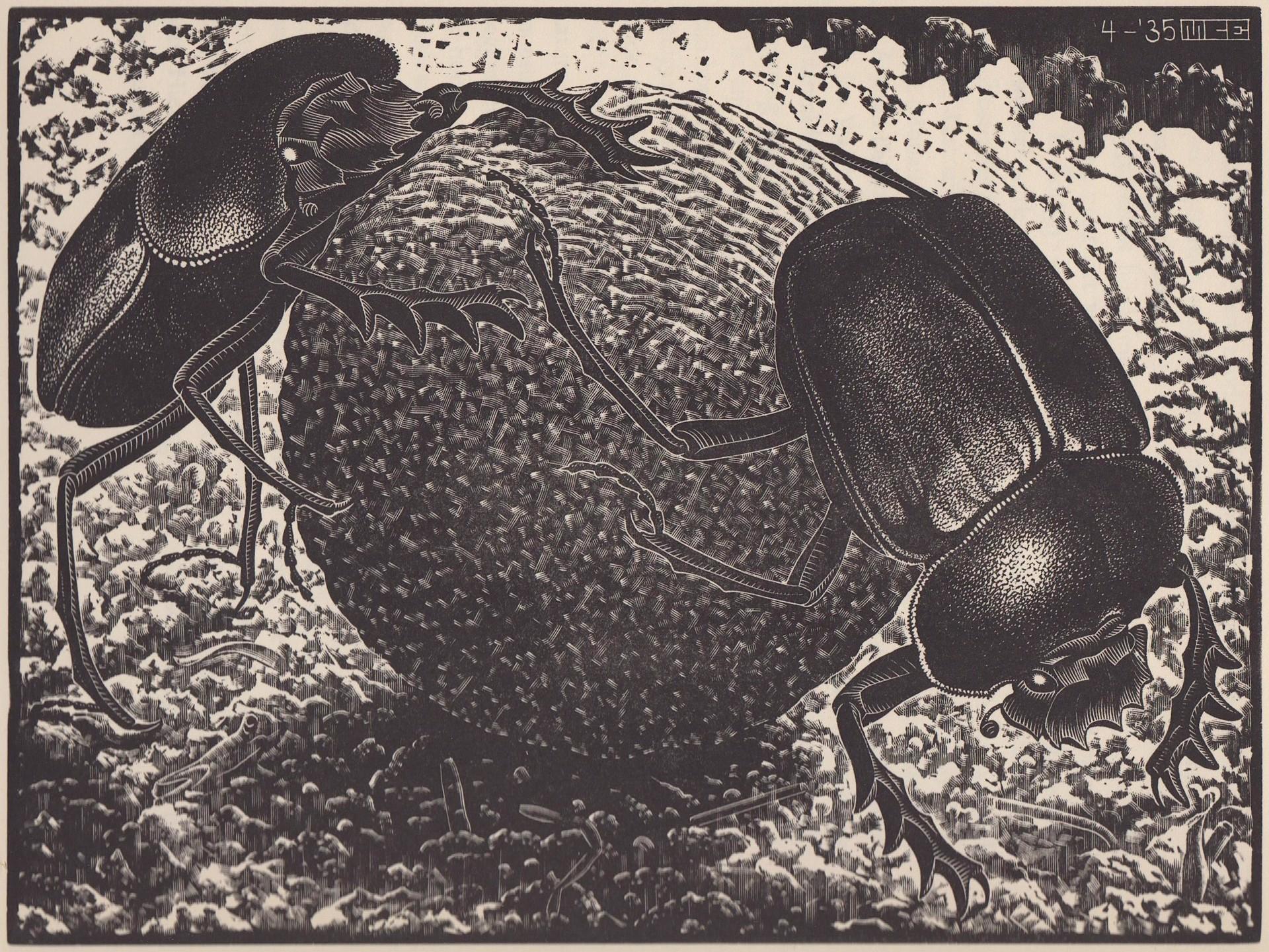 Scarabs by M.C. Escher