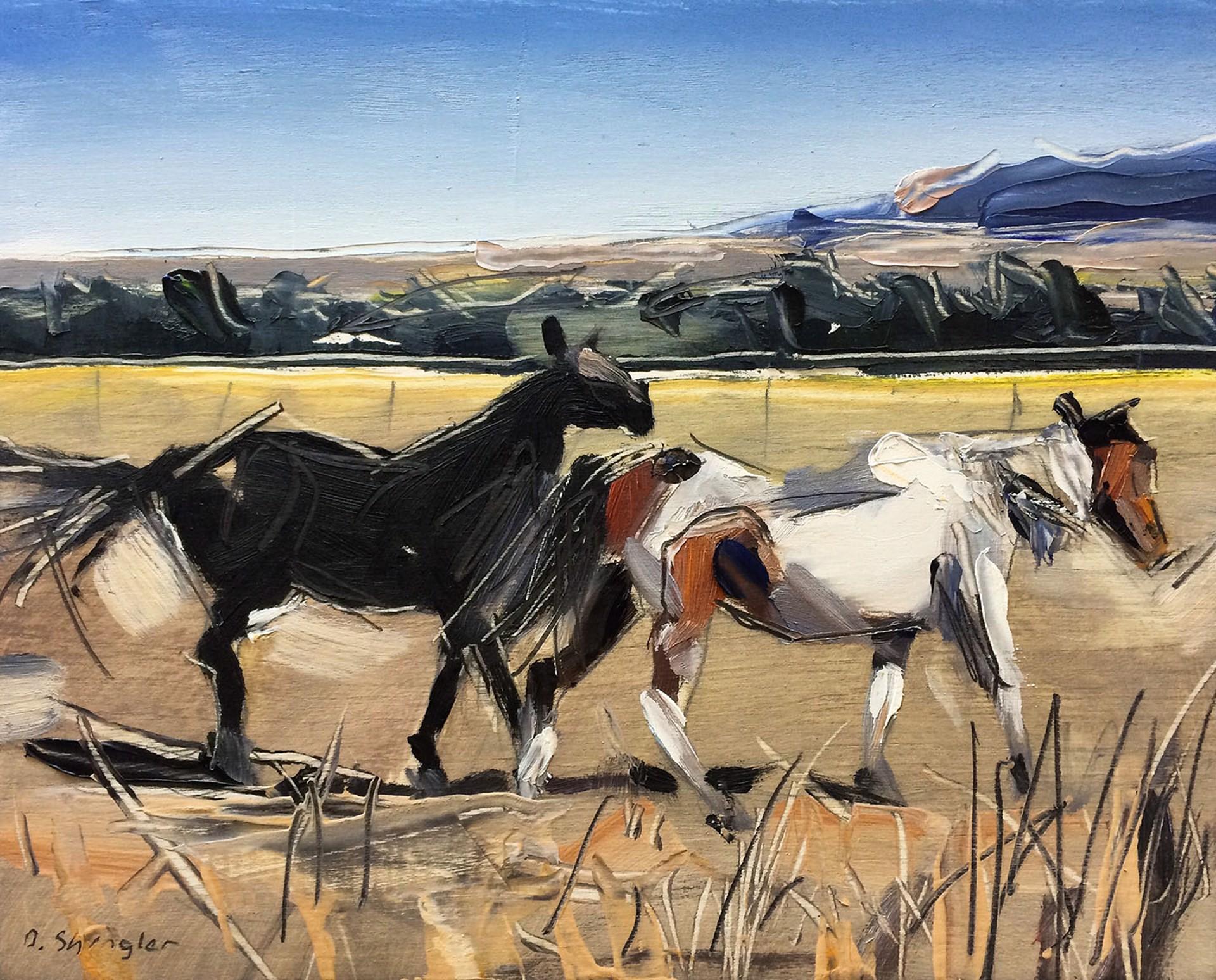 Pair of Horses, Montana by David Shingler