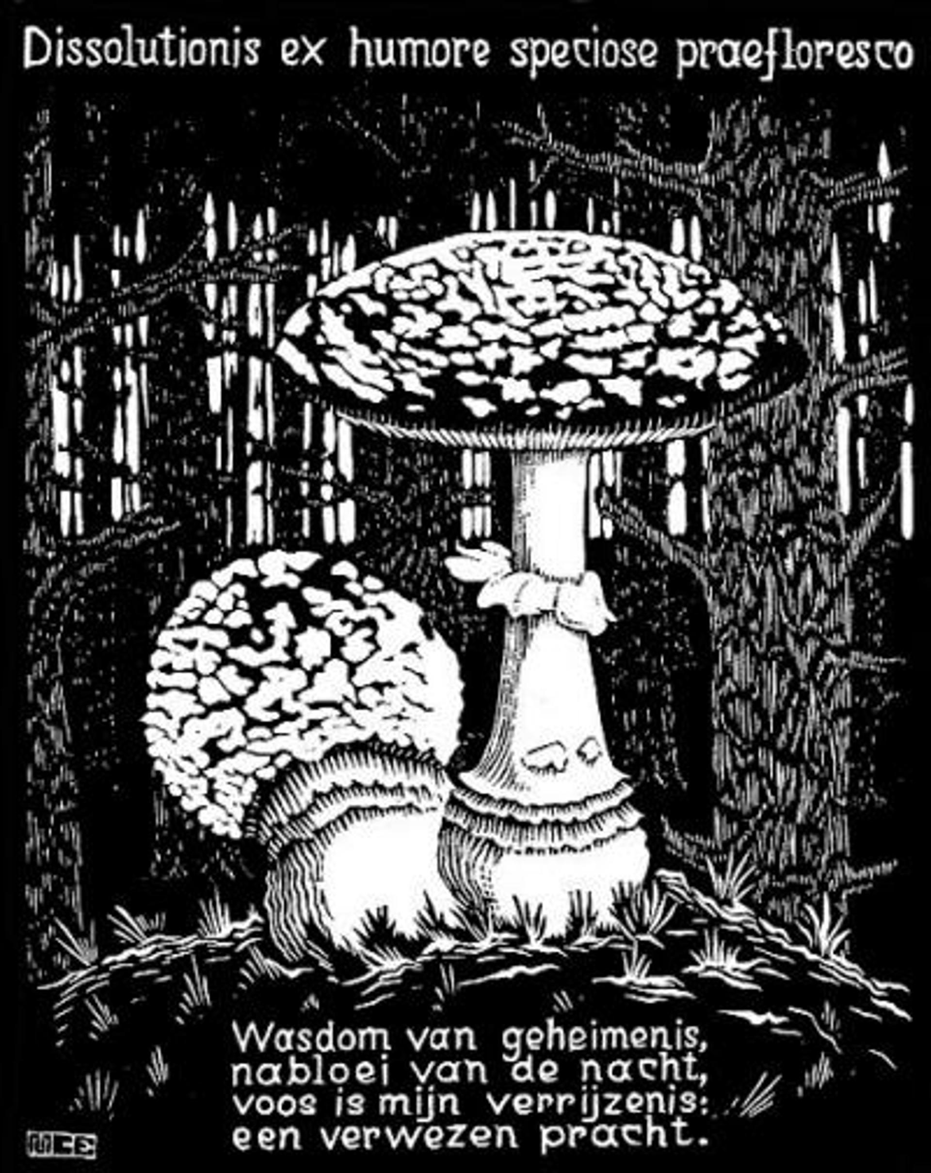 Emblemata - Toadstool by M.C. Escher