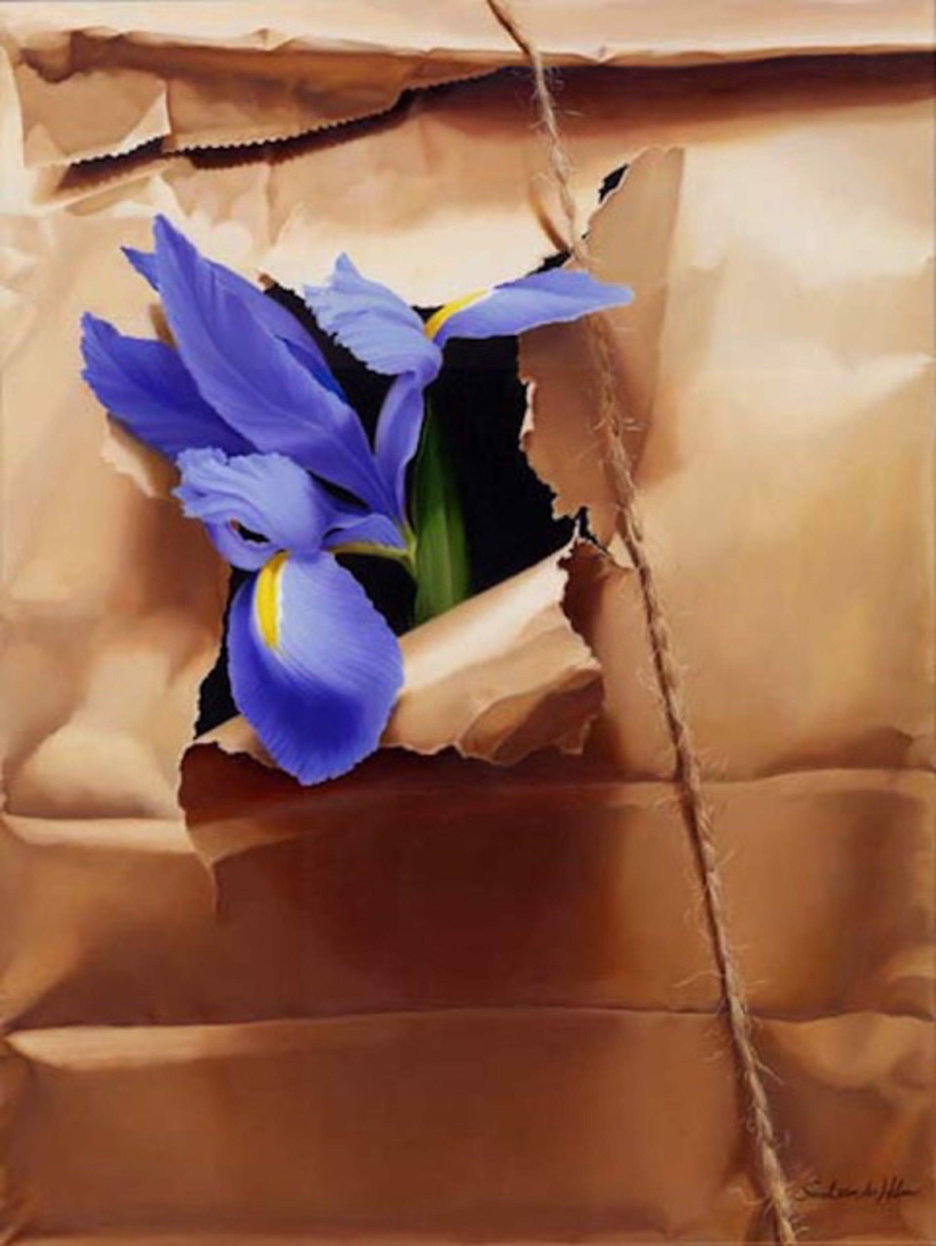 Iris in Brown Paper Sack by Sarah van der Helm