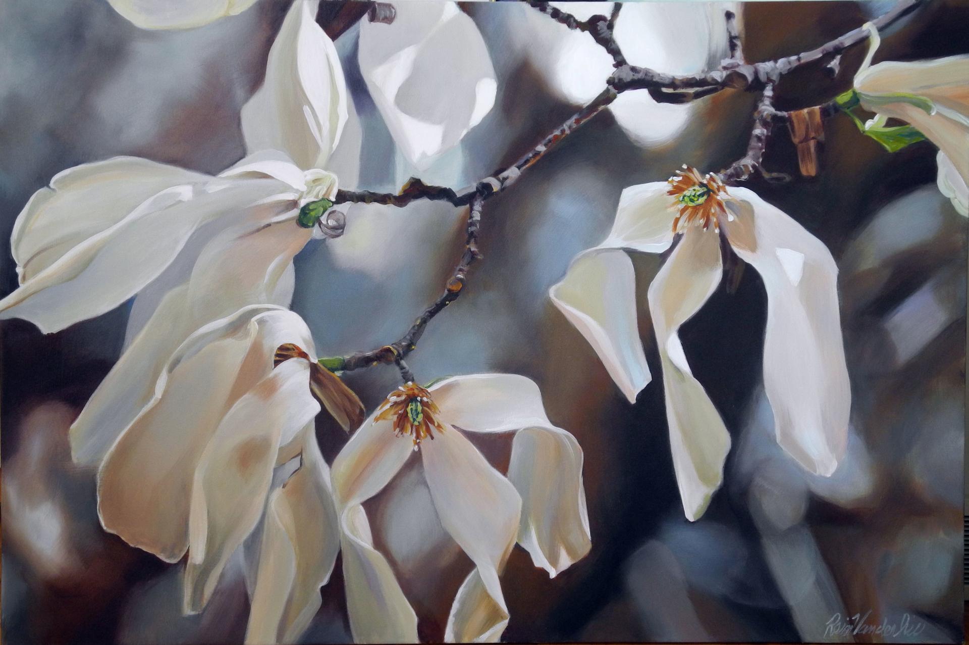 Repose in Soft Light by Rein Vanderhill