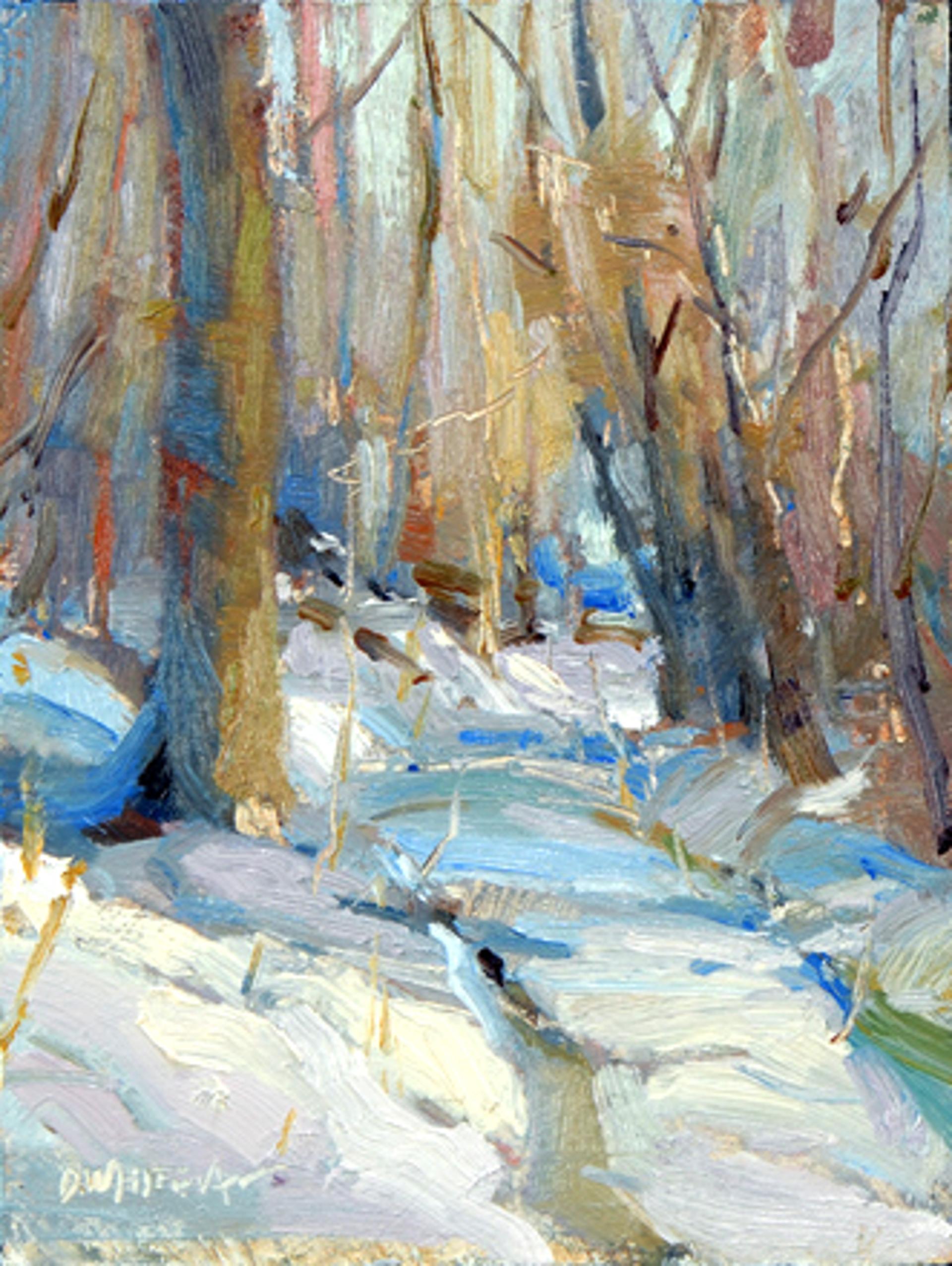 Winter by Dawn Whitelaw