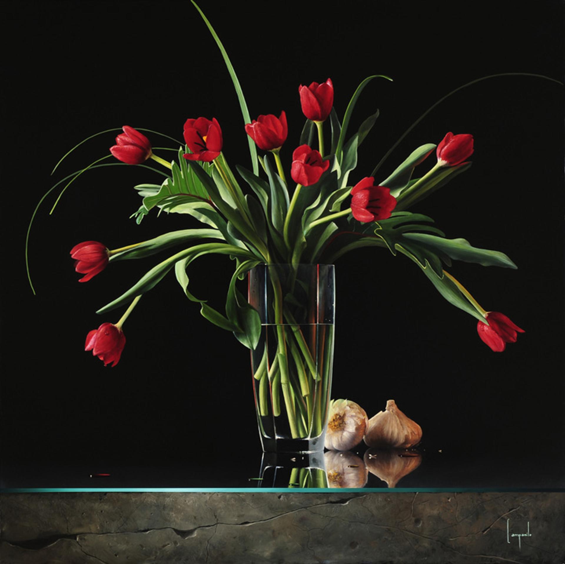 Passione Eterna by Dario Campanile