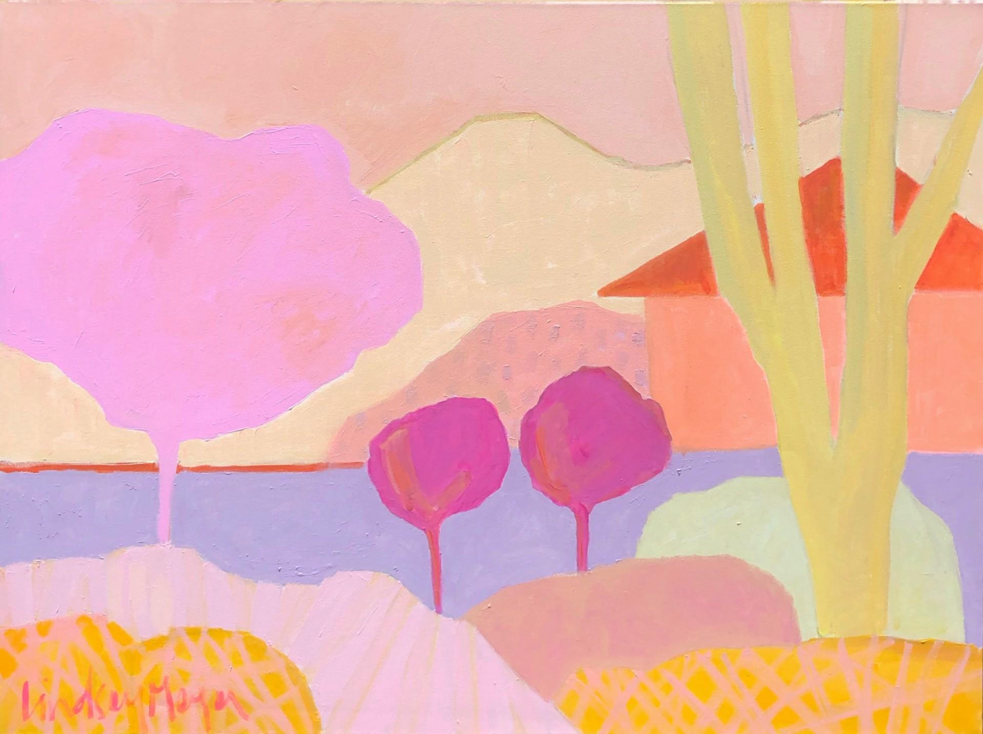 Steady Stream by Lindsey Meyer