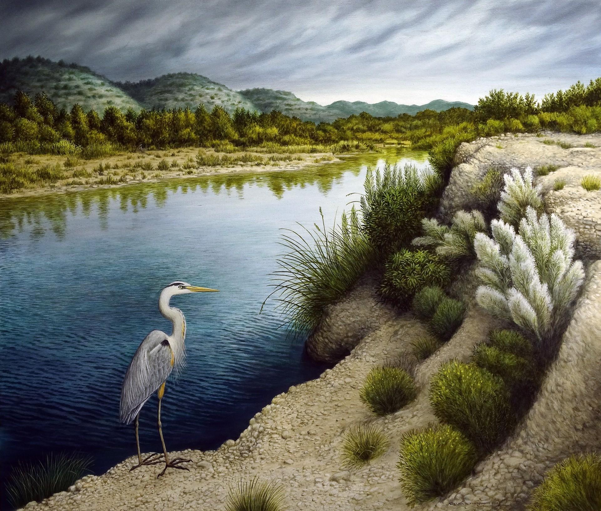 Upper Nueces River by William B. Montgomery