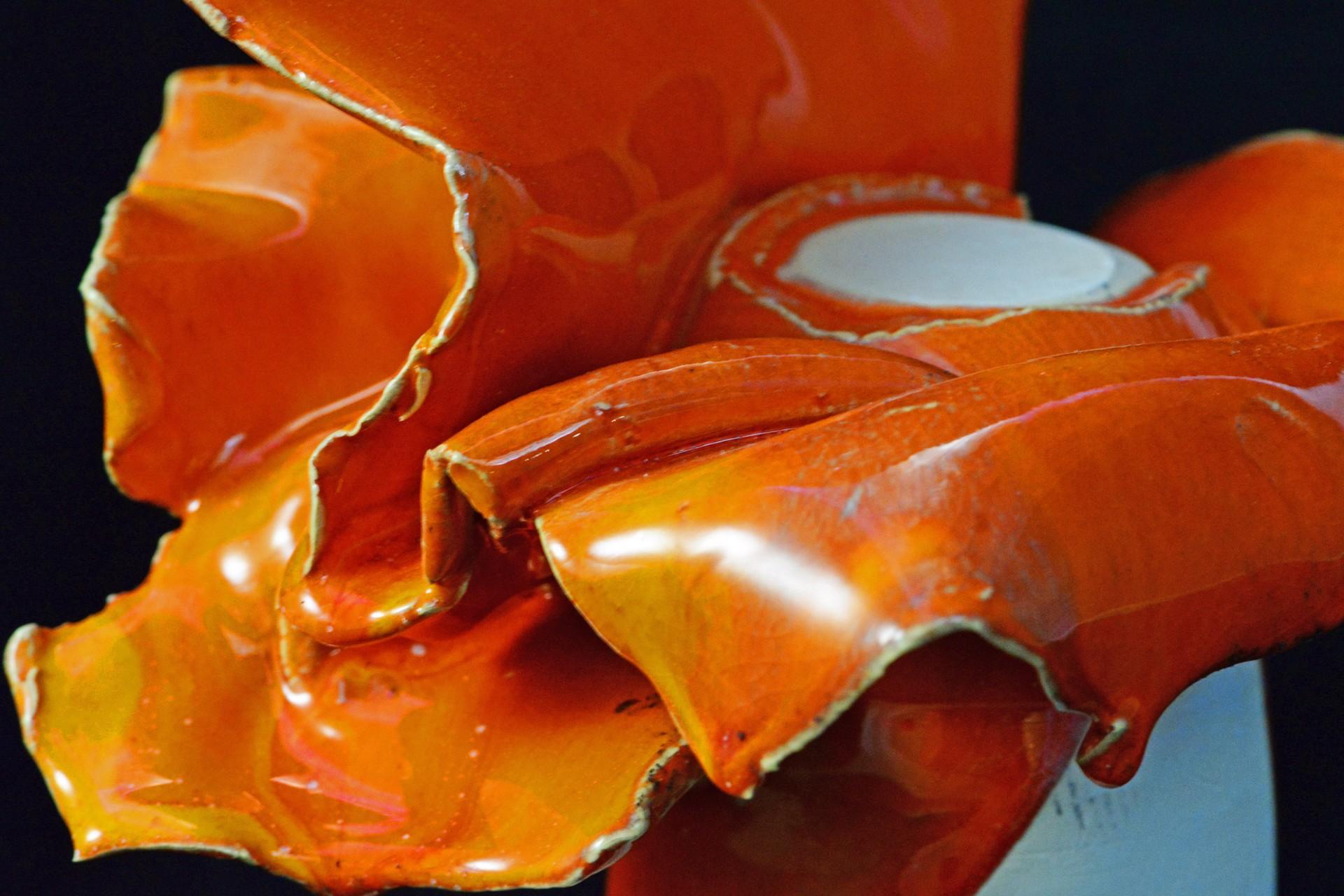 Orange by Austin Center