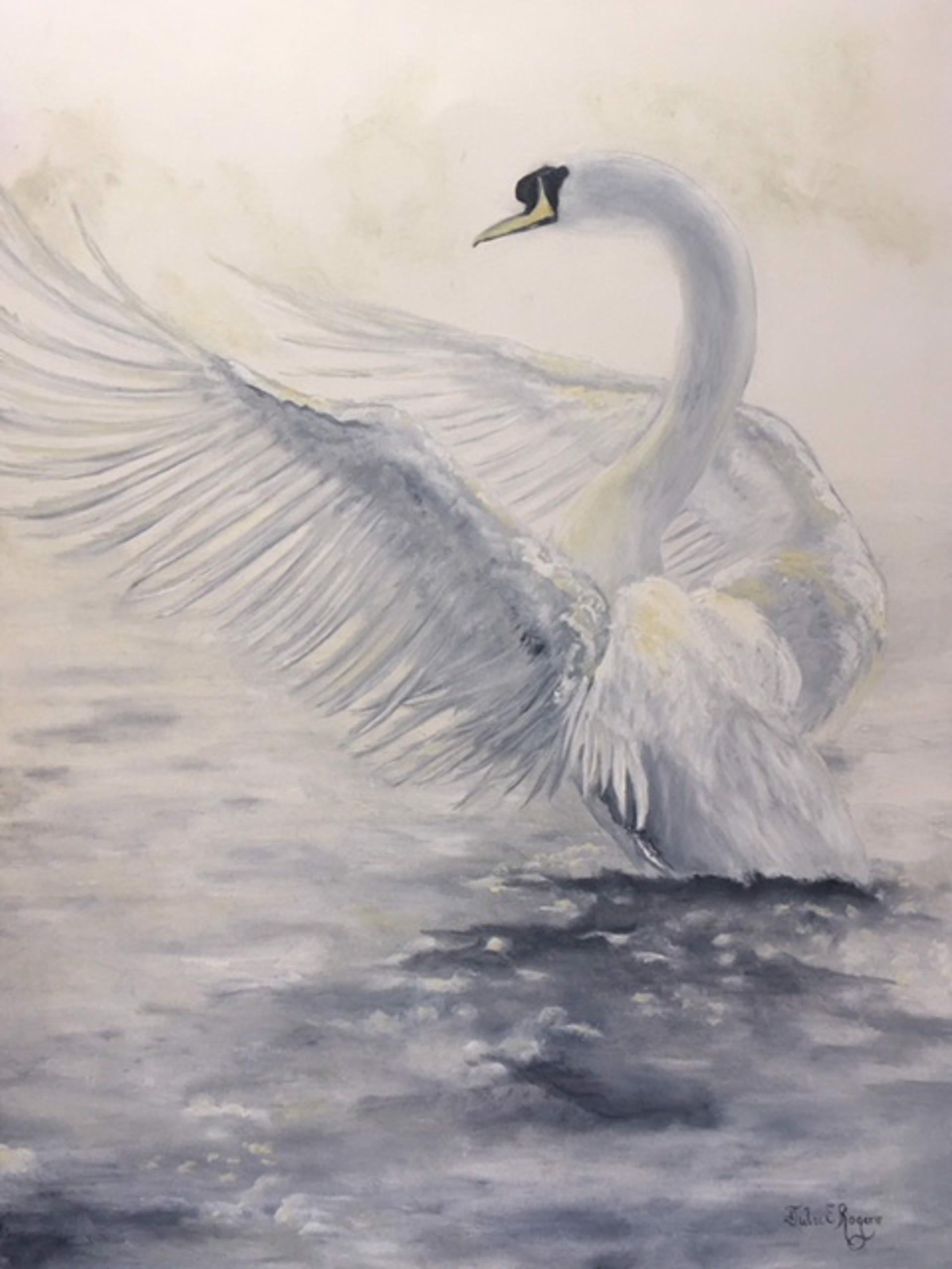 Swan by Julie Rogers