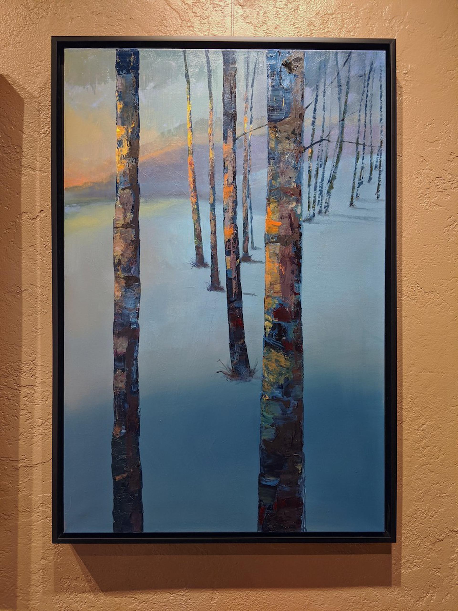 Winter Harmony by Craig Freeman