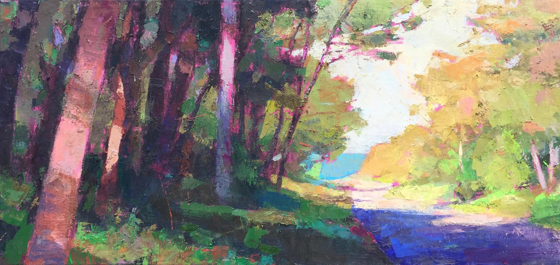 Ocean Path by Larry Horowitz