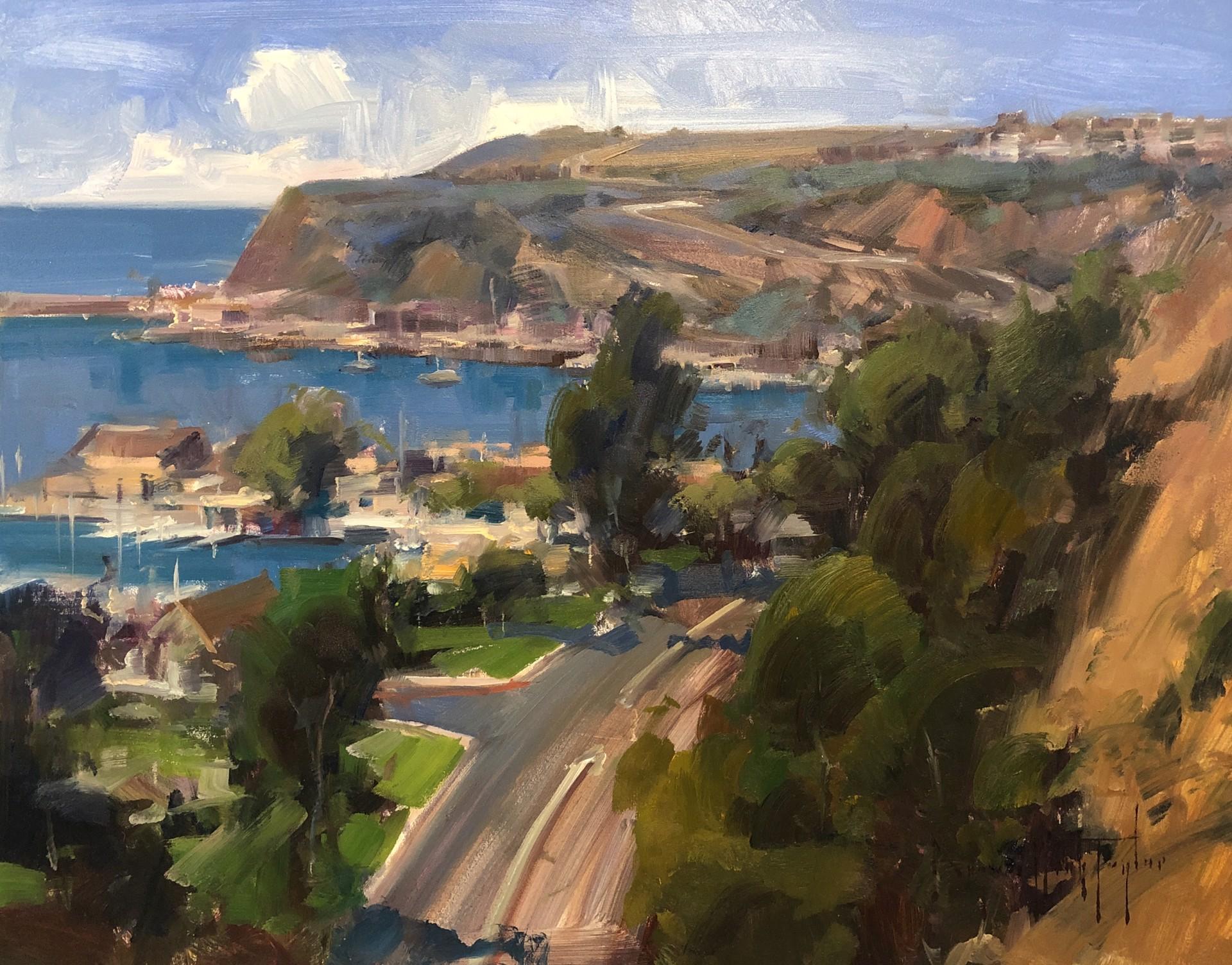 Dana Point Overlook by Bryan Mark Taylor