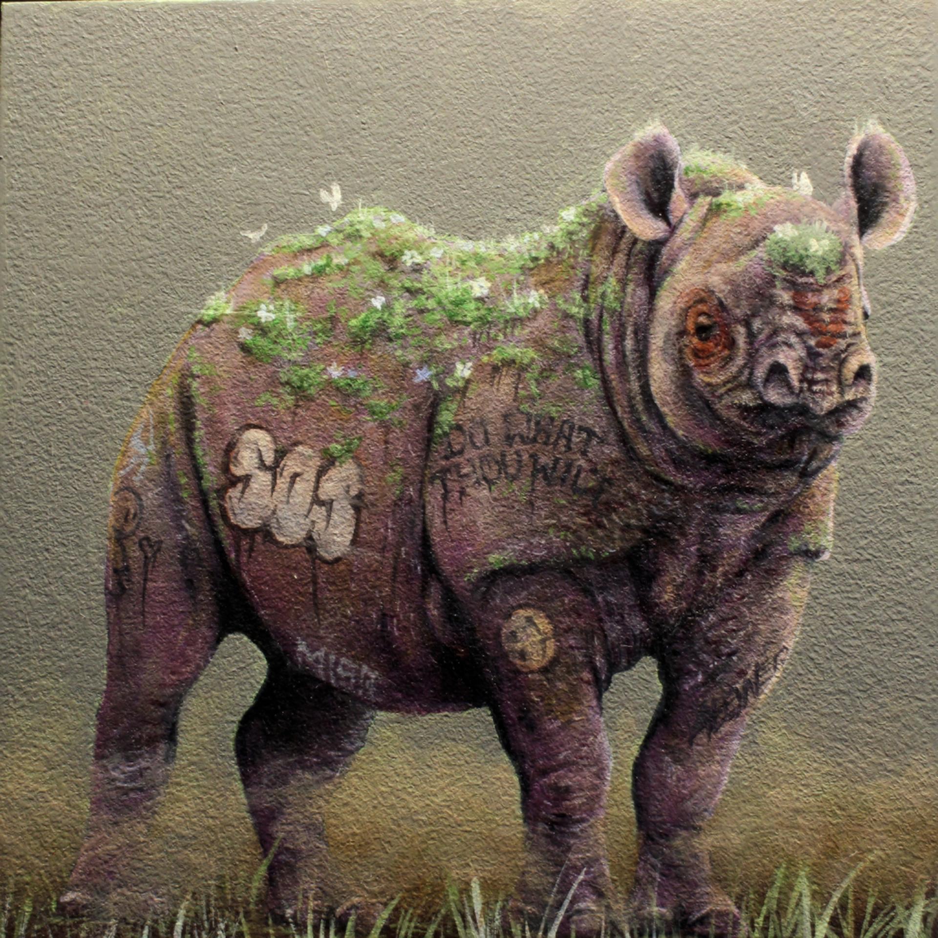 Pink Rhino by 3rd Version (Ben Patterson)