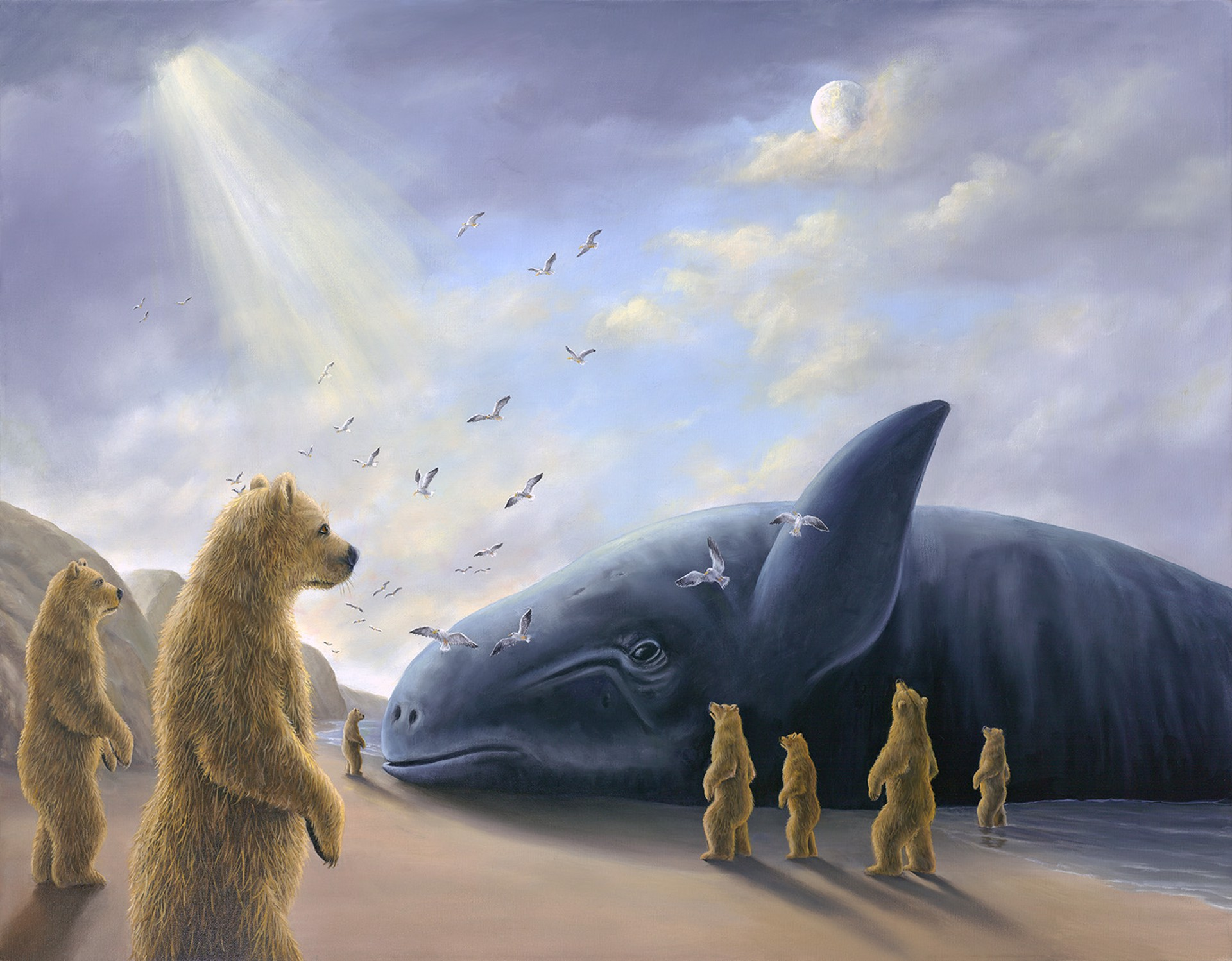 The Visitor by Robert Bissell