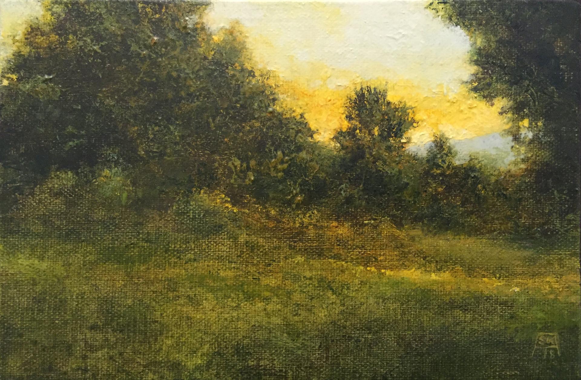 Morning (Somewhere) by Shawn Krueger