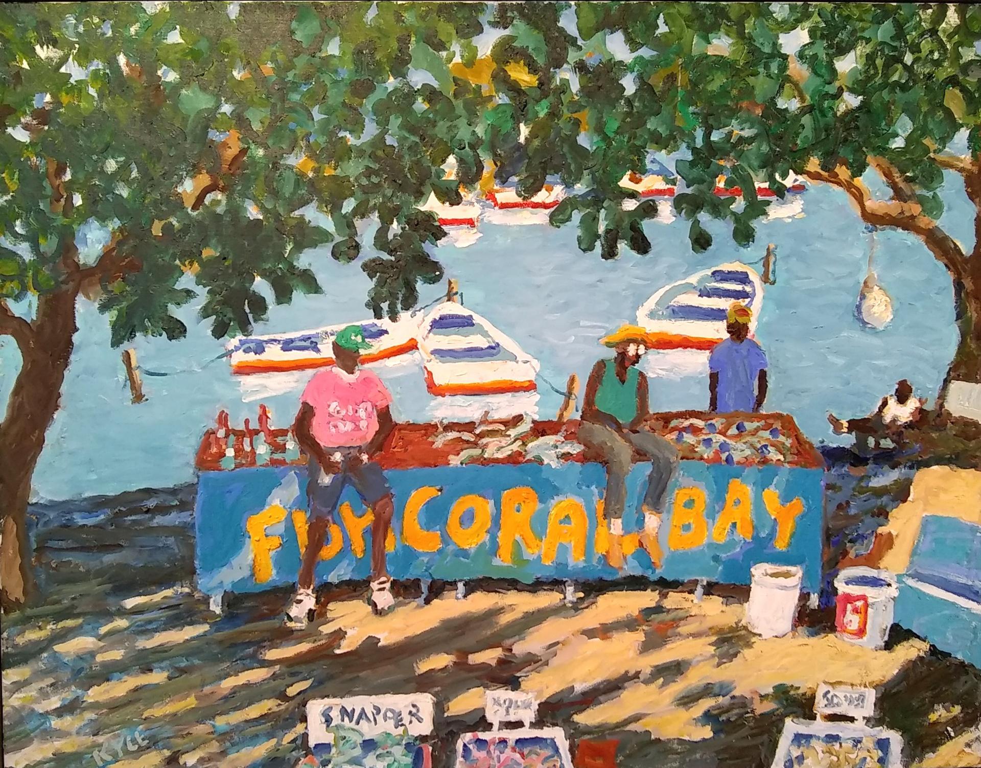 Coral Bay, St. John by Kyle Highsmith
