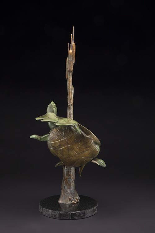 Lily Pad Peeker by Tim Cherry