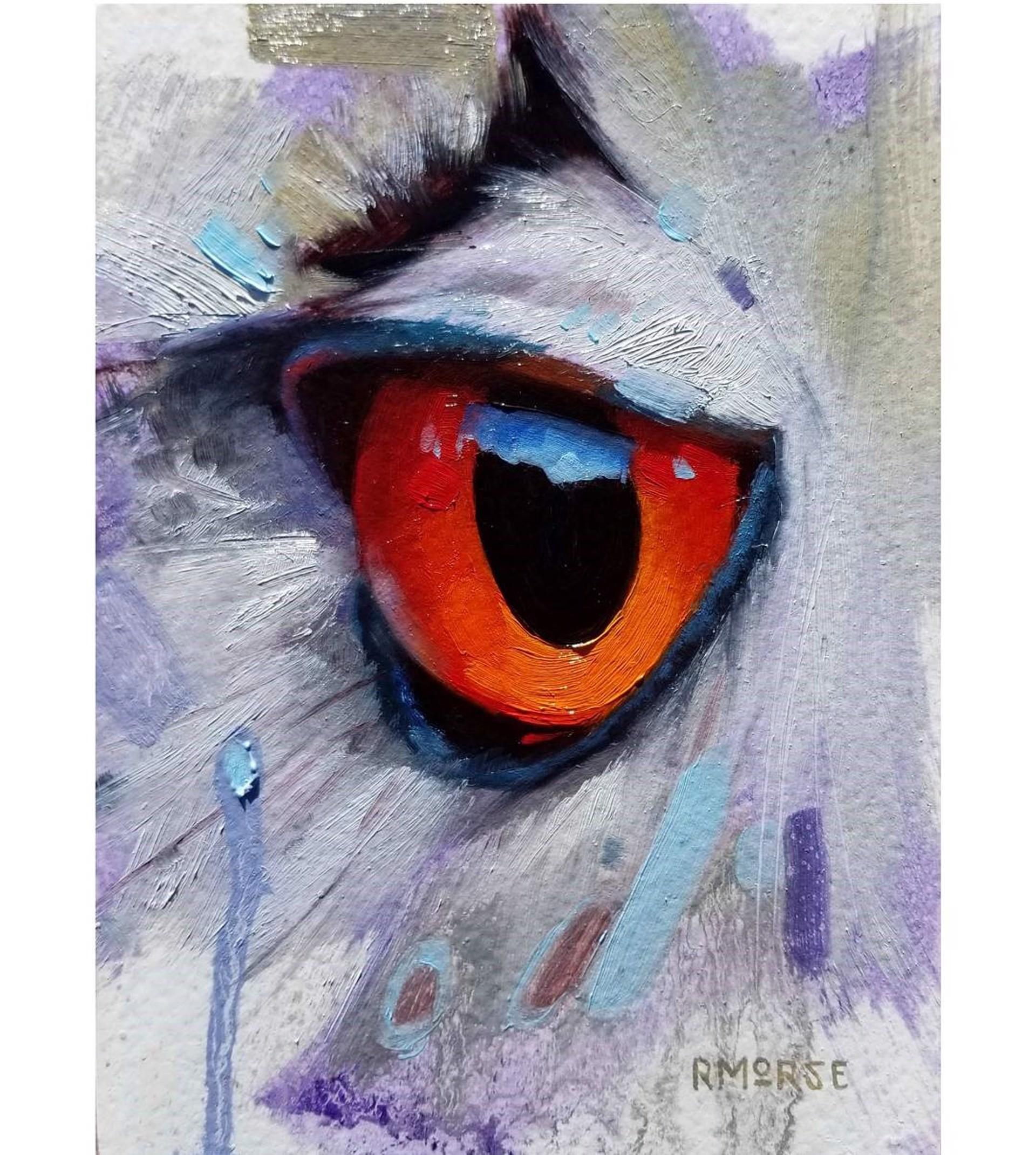 Scarlet Eye by Ryan Morse
