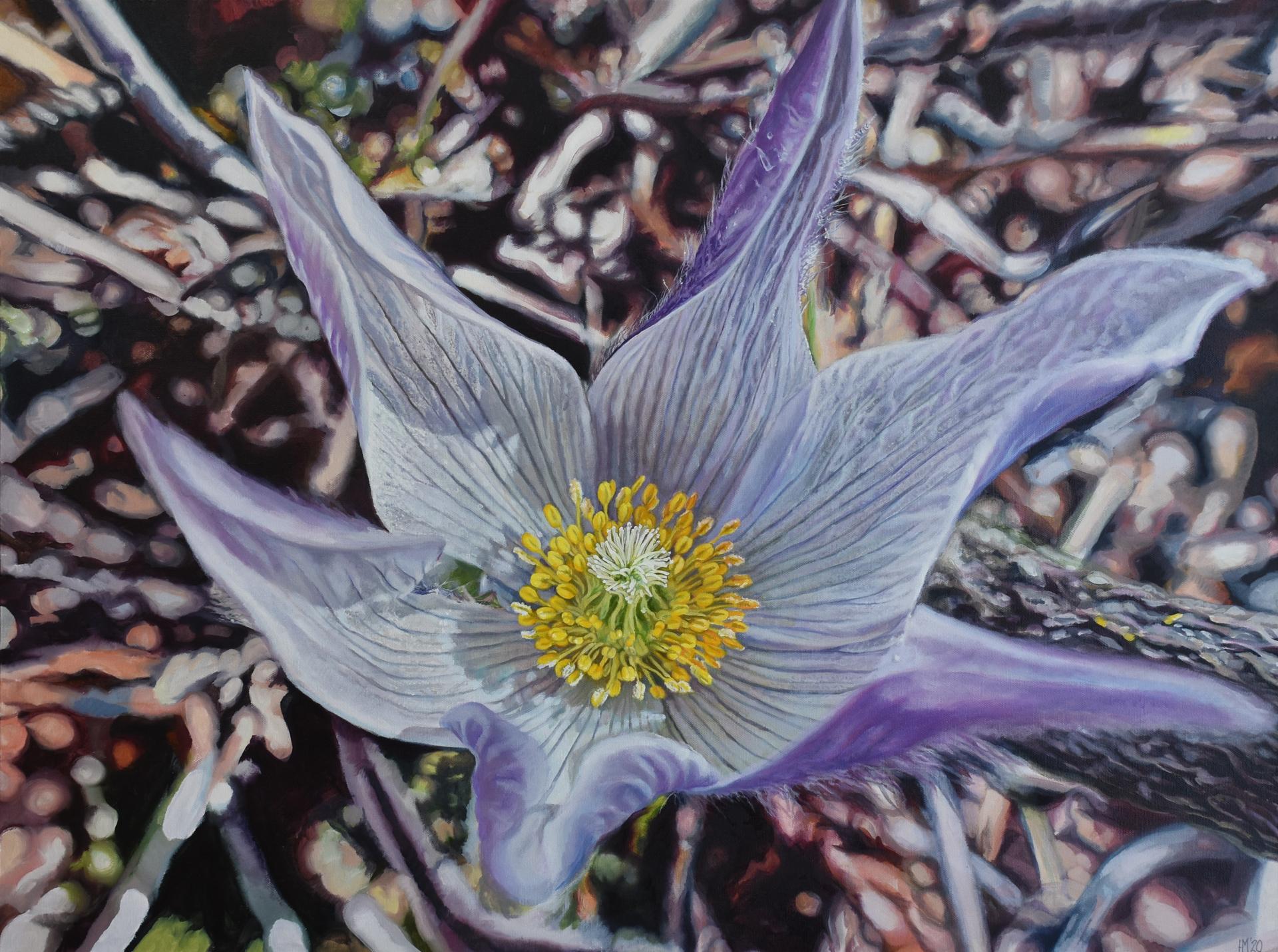 Unfurl by Hannah Moghbel