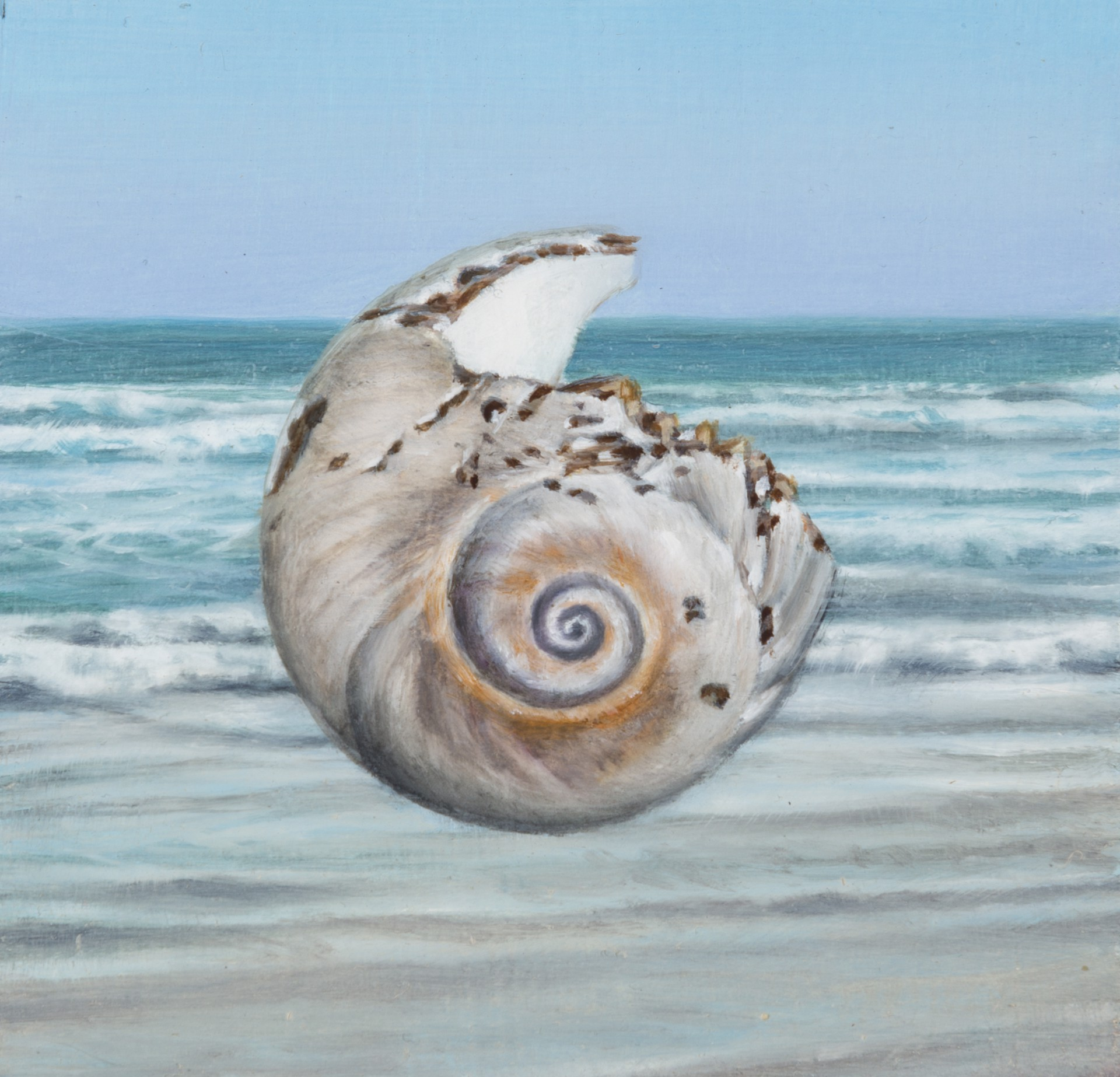 Shell 2 by Gregory Block