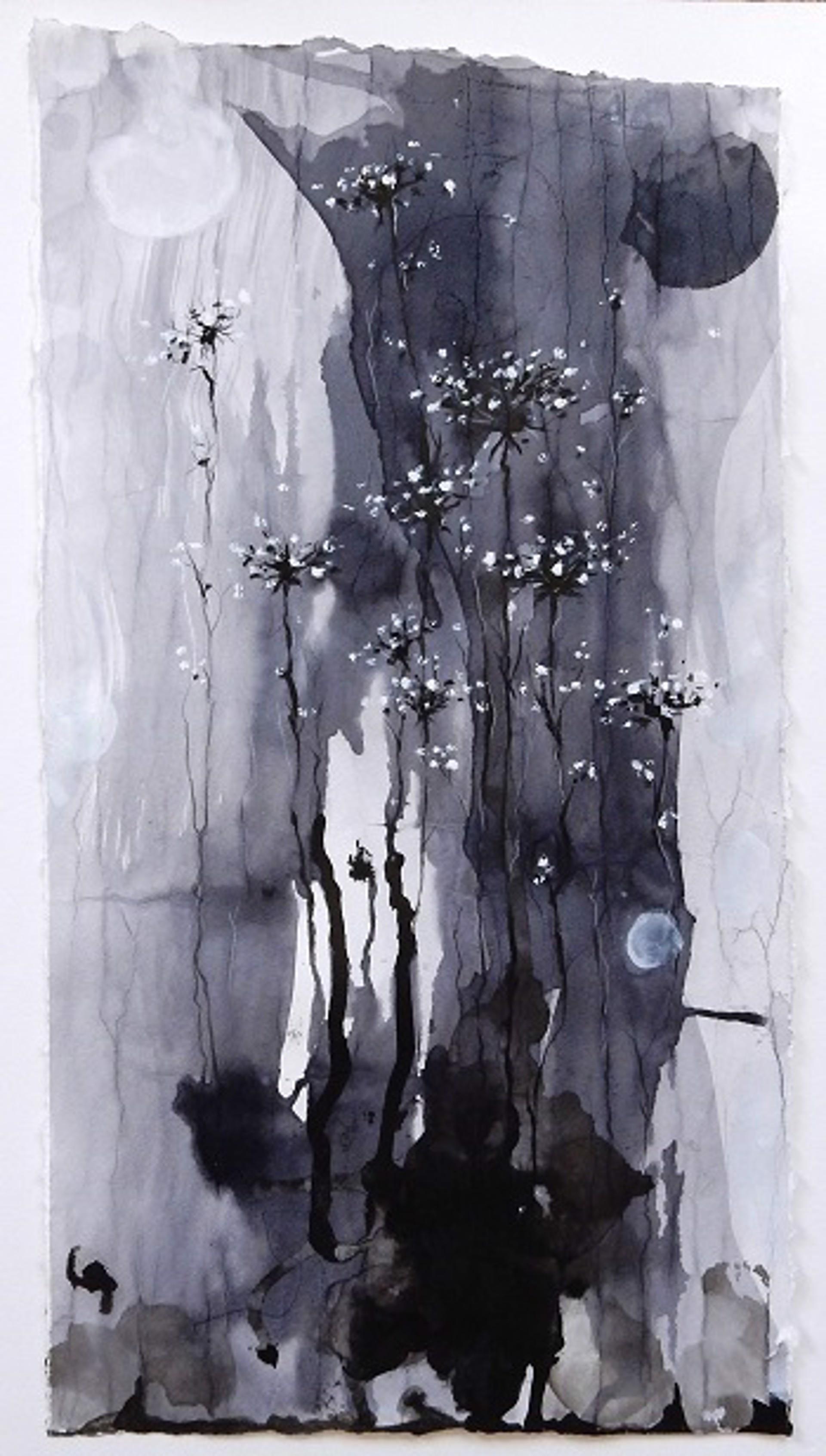 Lace Moon by Julia Mae Bancroft
