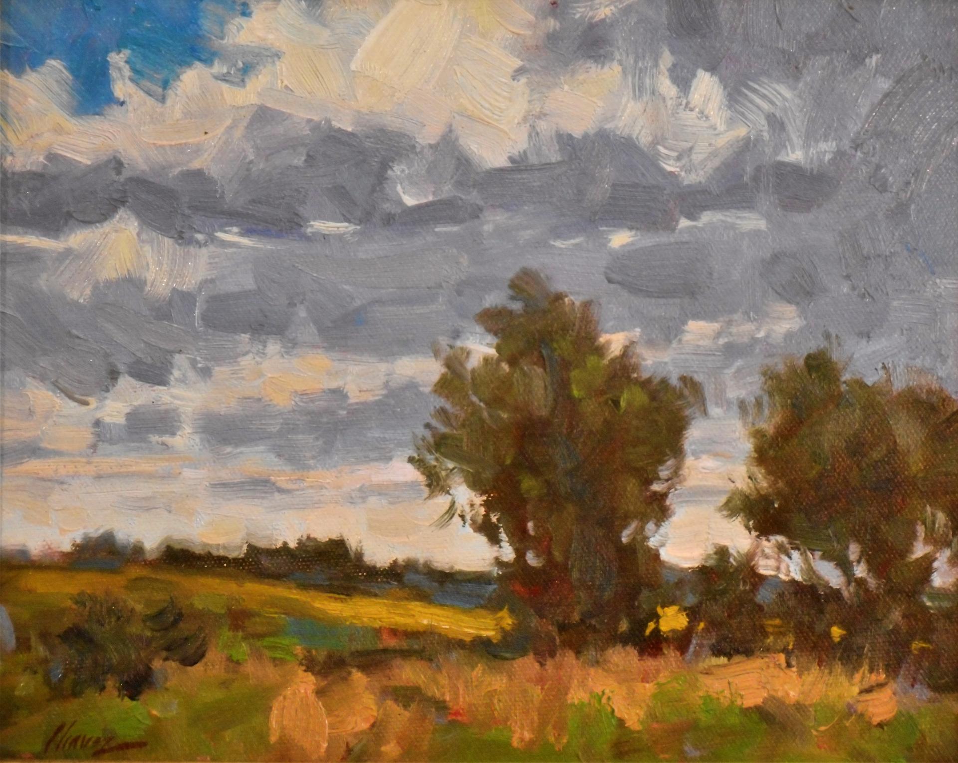 Cloud Movement by Lorenzo Chavez