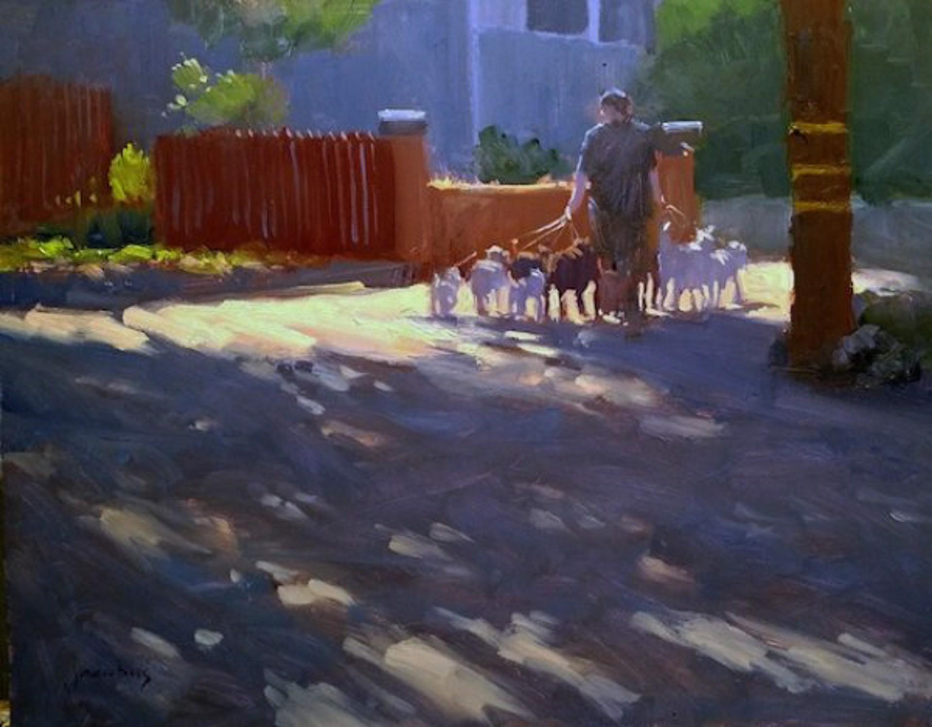 Dog Walker by Jacobus Baas
