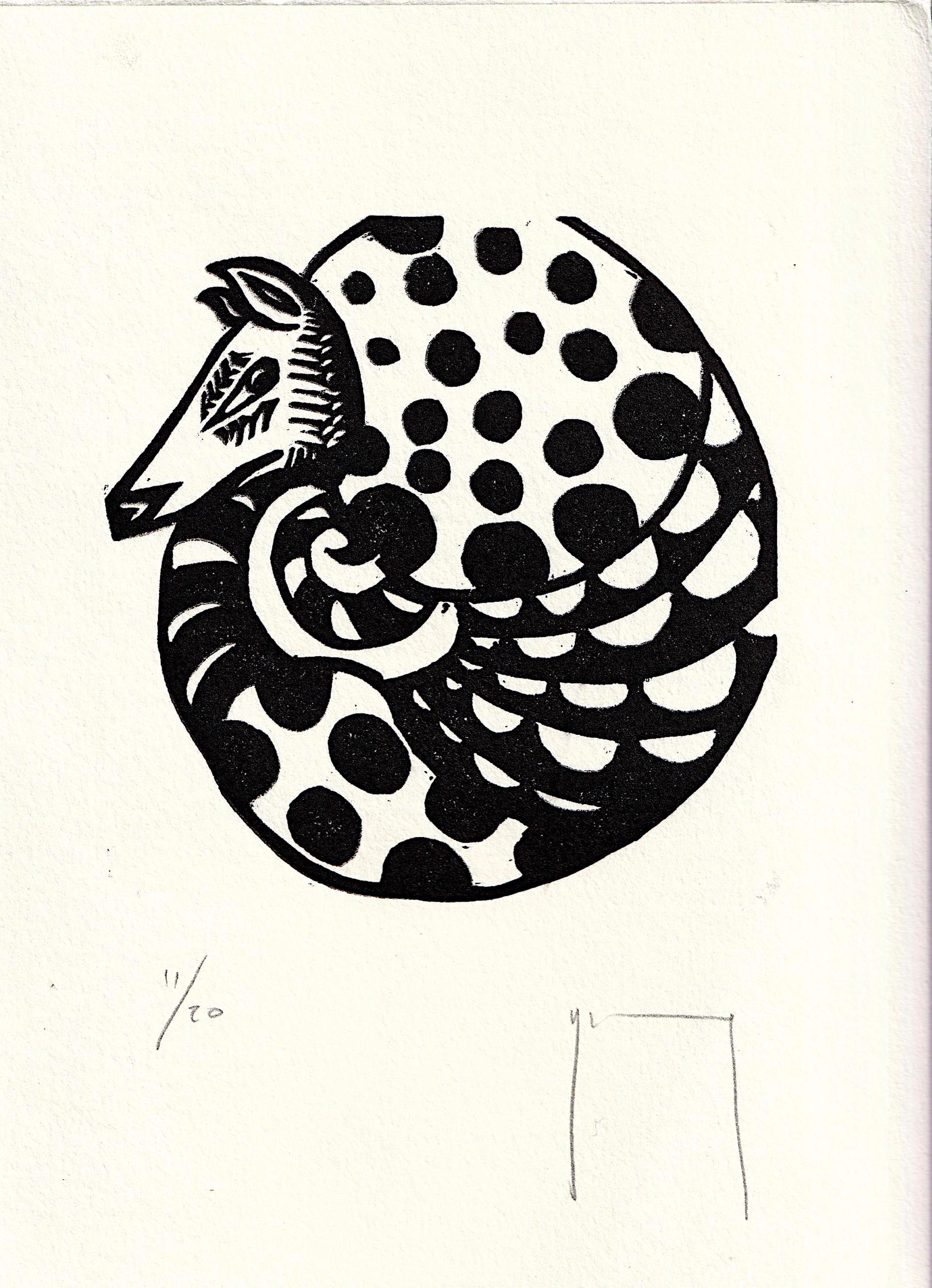 Armadillo Circular by Miguel Jimenez Martinez
