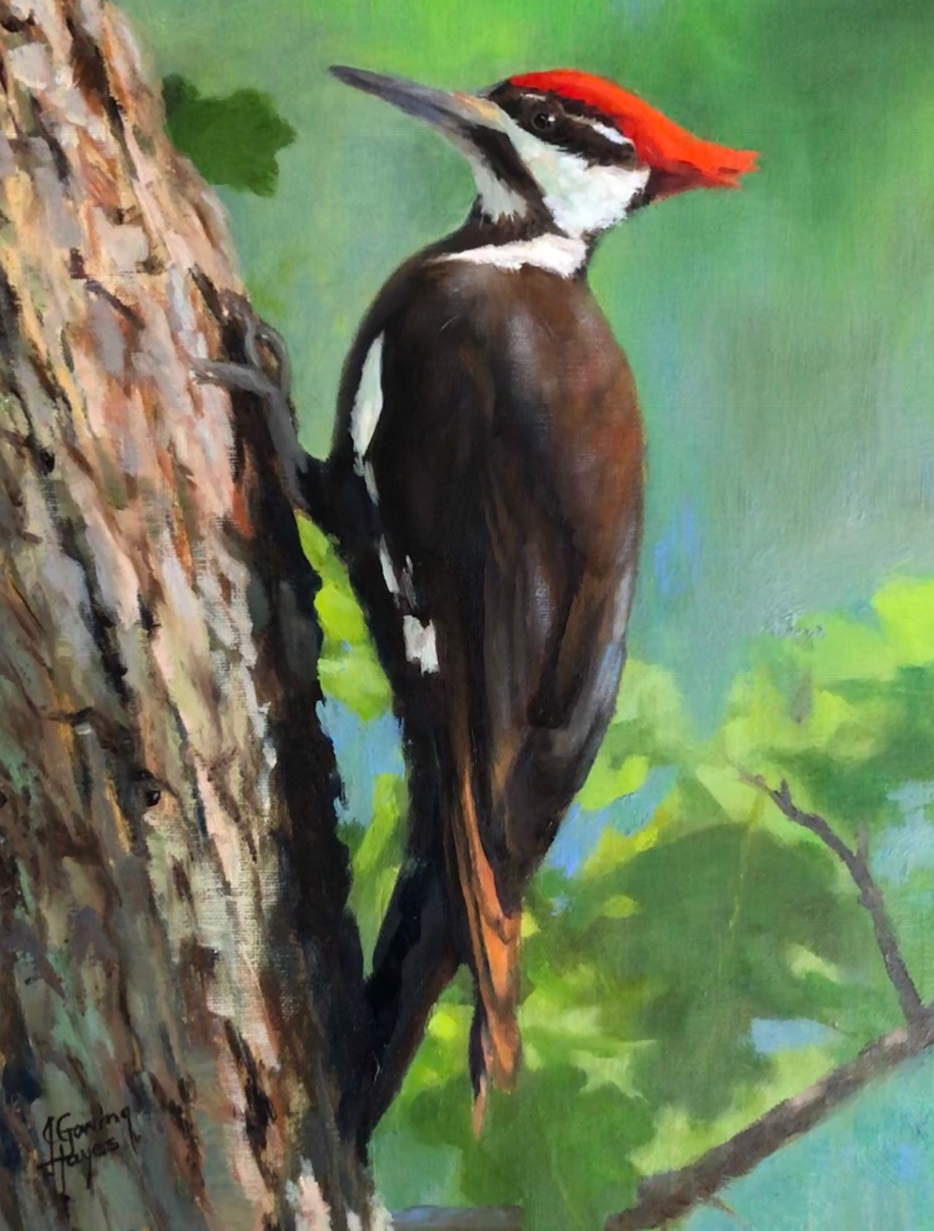 Woodland Redhead by Julie Gowing Hayes