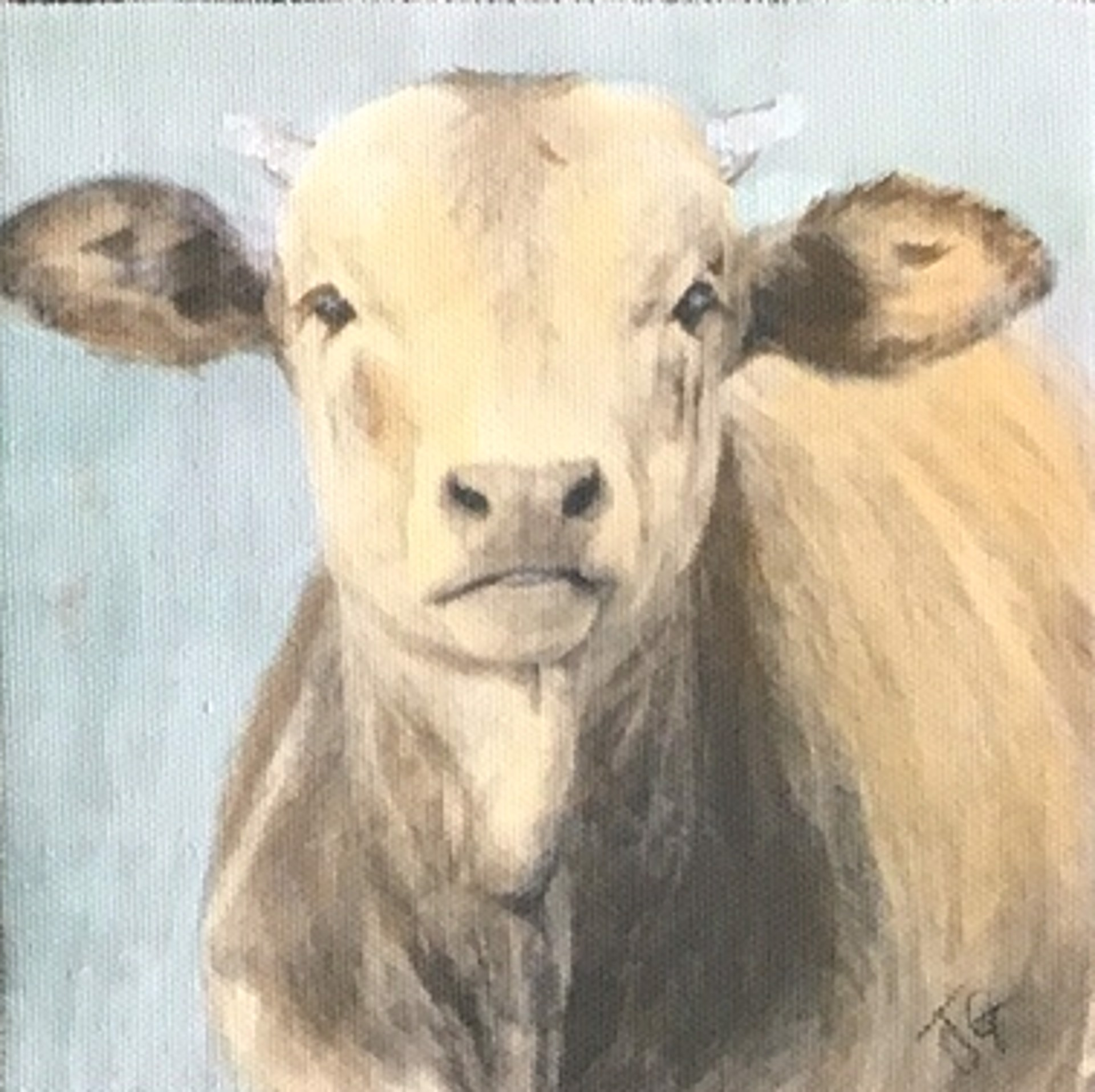 Calf with Little Horns 1902 by Jenny Gummersall