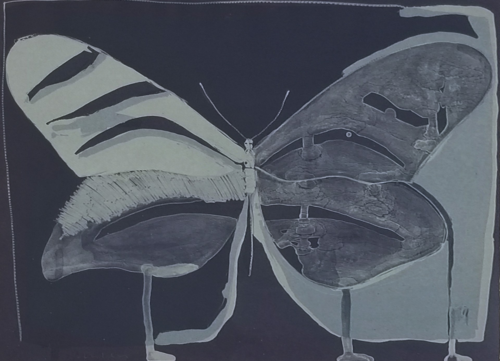 Night Butterfly by Fritz Scholder